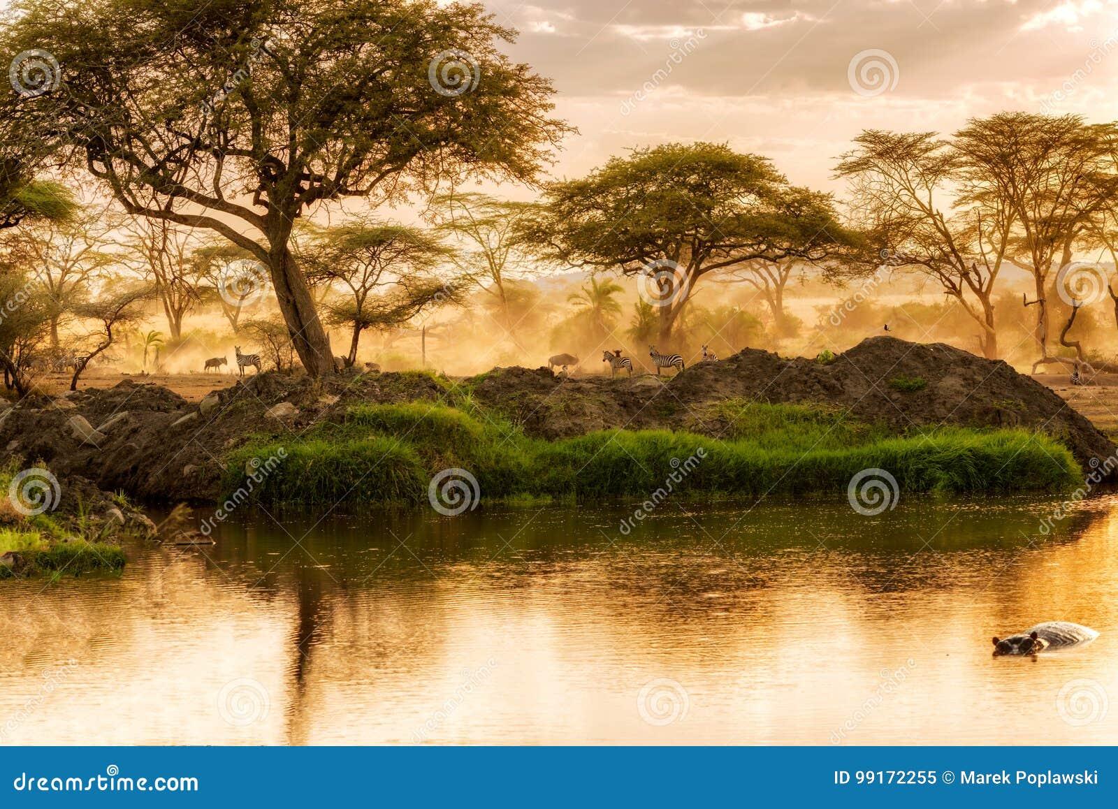 Sonnenuntergang über dem Fluss in Serengeti, Tansania