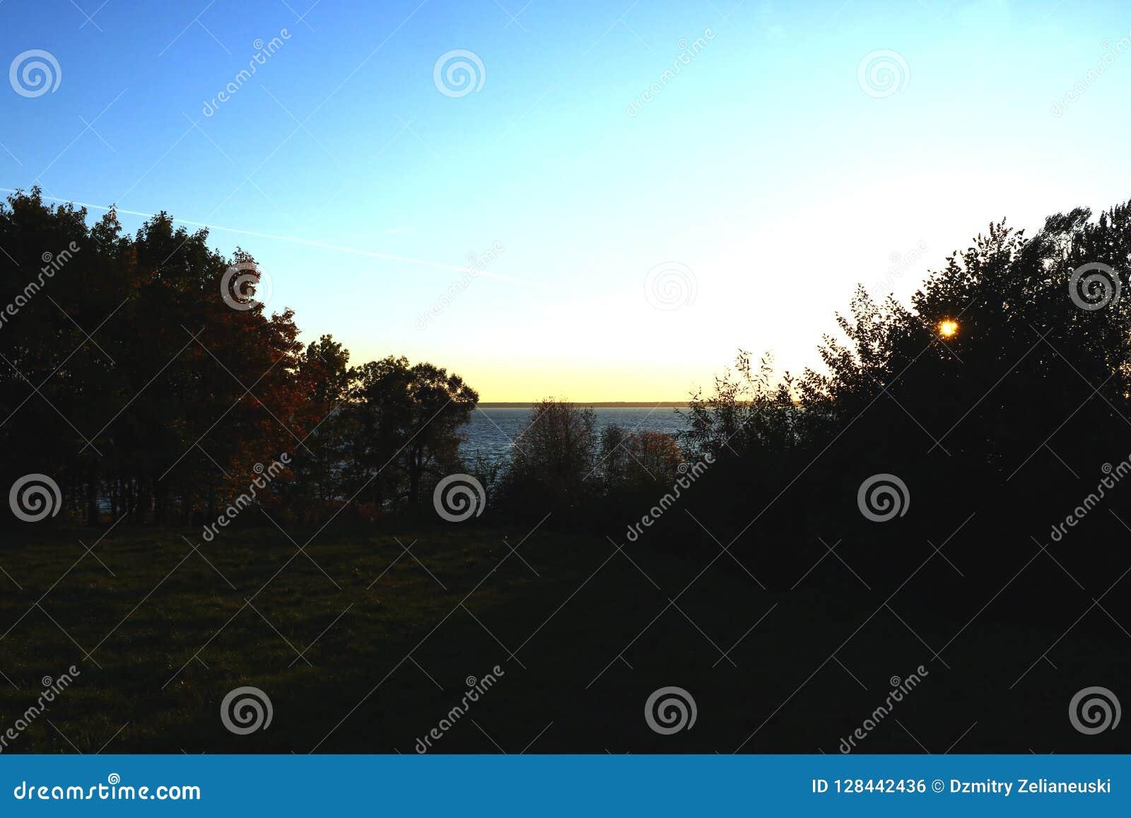 Sonnenuntergang auf dem See umgeben durch Bäume, Hintergrund