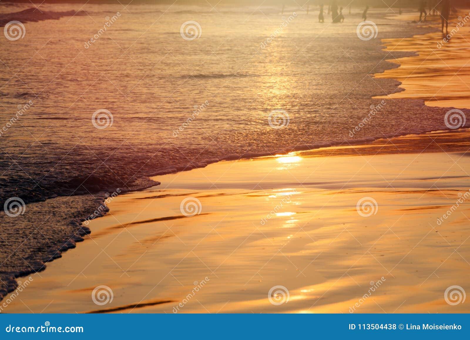 Sonnenuntergang auf tropischem Strand in Sri Lanka - goldene Farbe bewegt Meerwasser, Schattenbild von Leuten auf Hintergrund wel