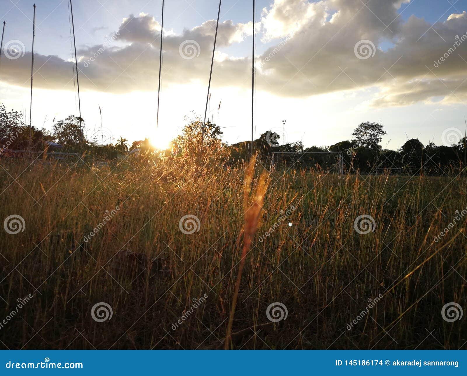 Sonnenuntergang in der Sommerzeit