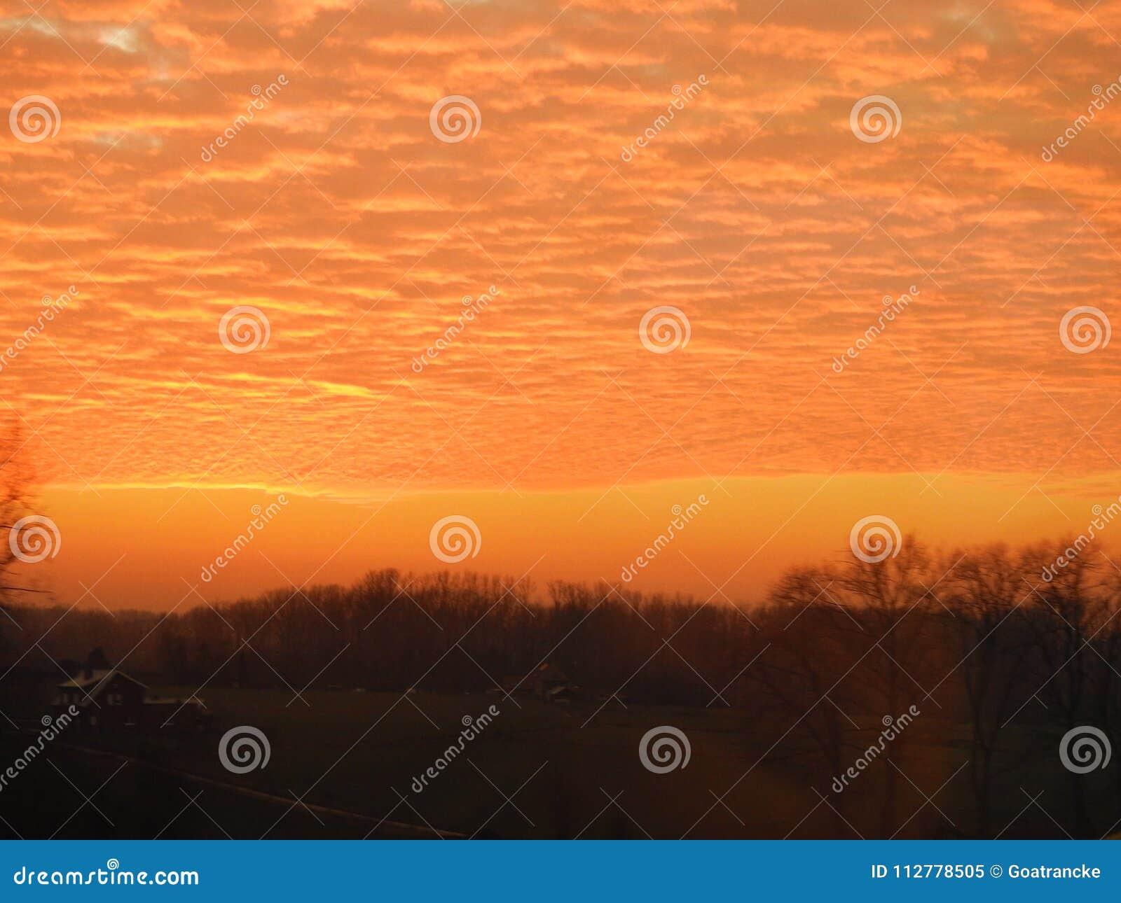 Sonnenuntergang im Wald, Landschaft