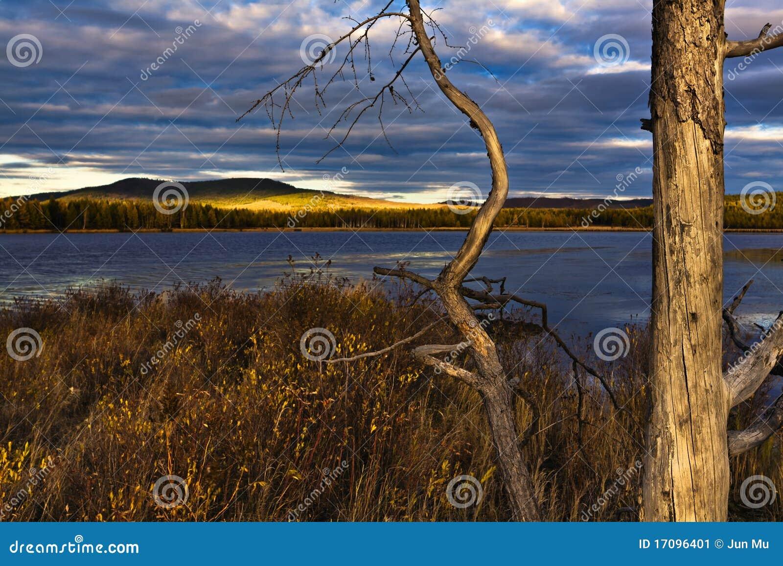 Sonnenuntergang unter dem See und dem Wald