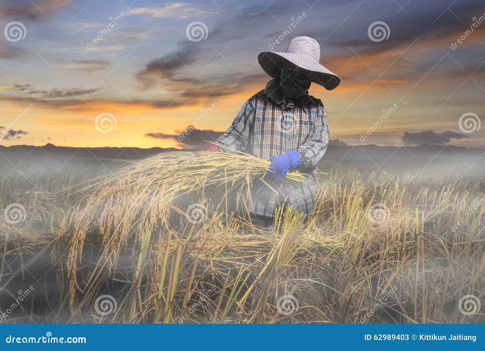 Sonnenunterganglandwirt