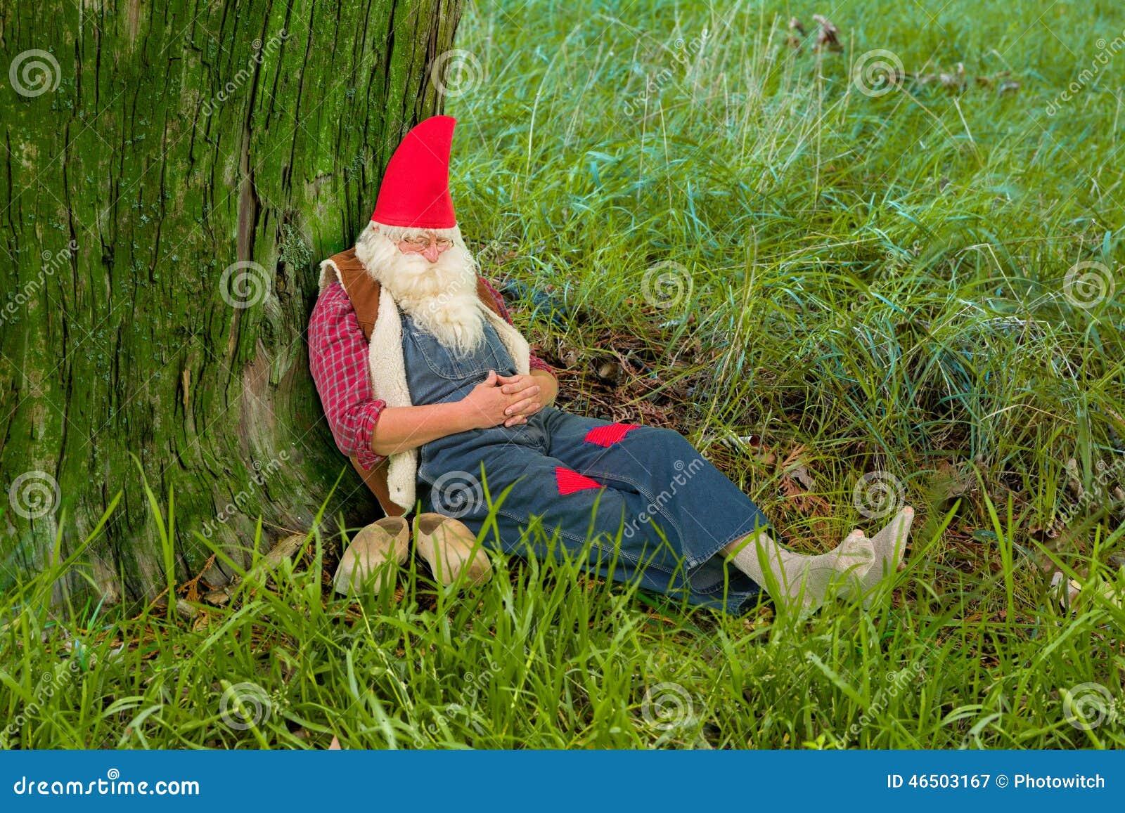 Sonno di gnomo della foresta fotografia stock immagine for Decoracion jardin gnomos
