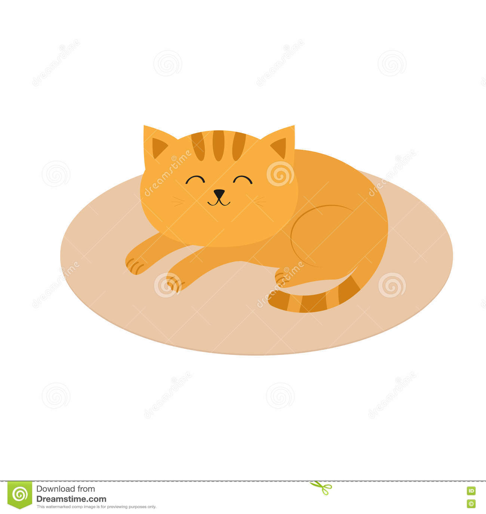 Gatto europeo rosso pelo corto caratteristiche del gatto rosso