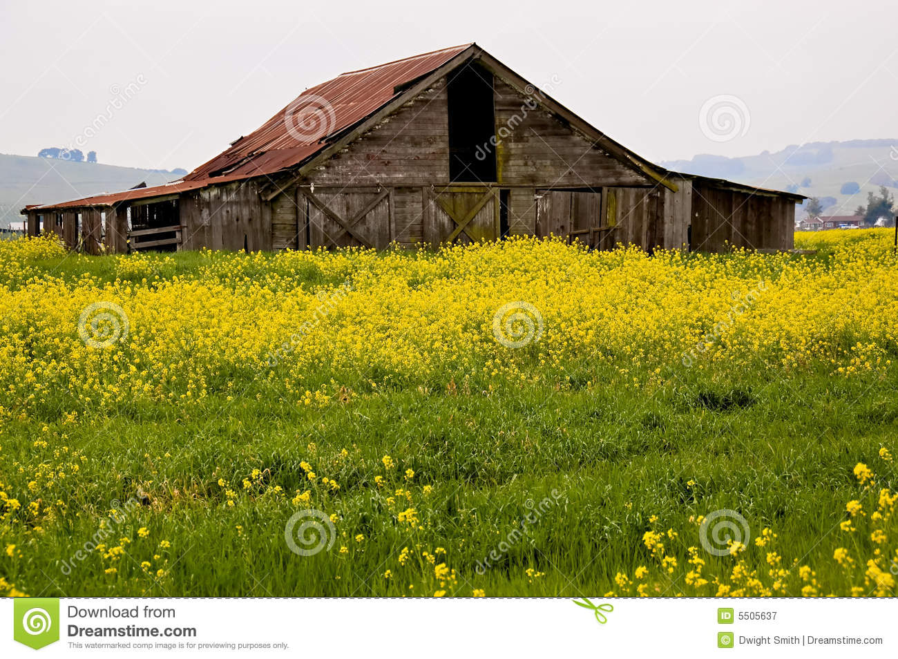 Sonoma Valley Barn Royalty Free Stock Photography Image