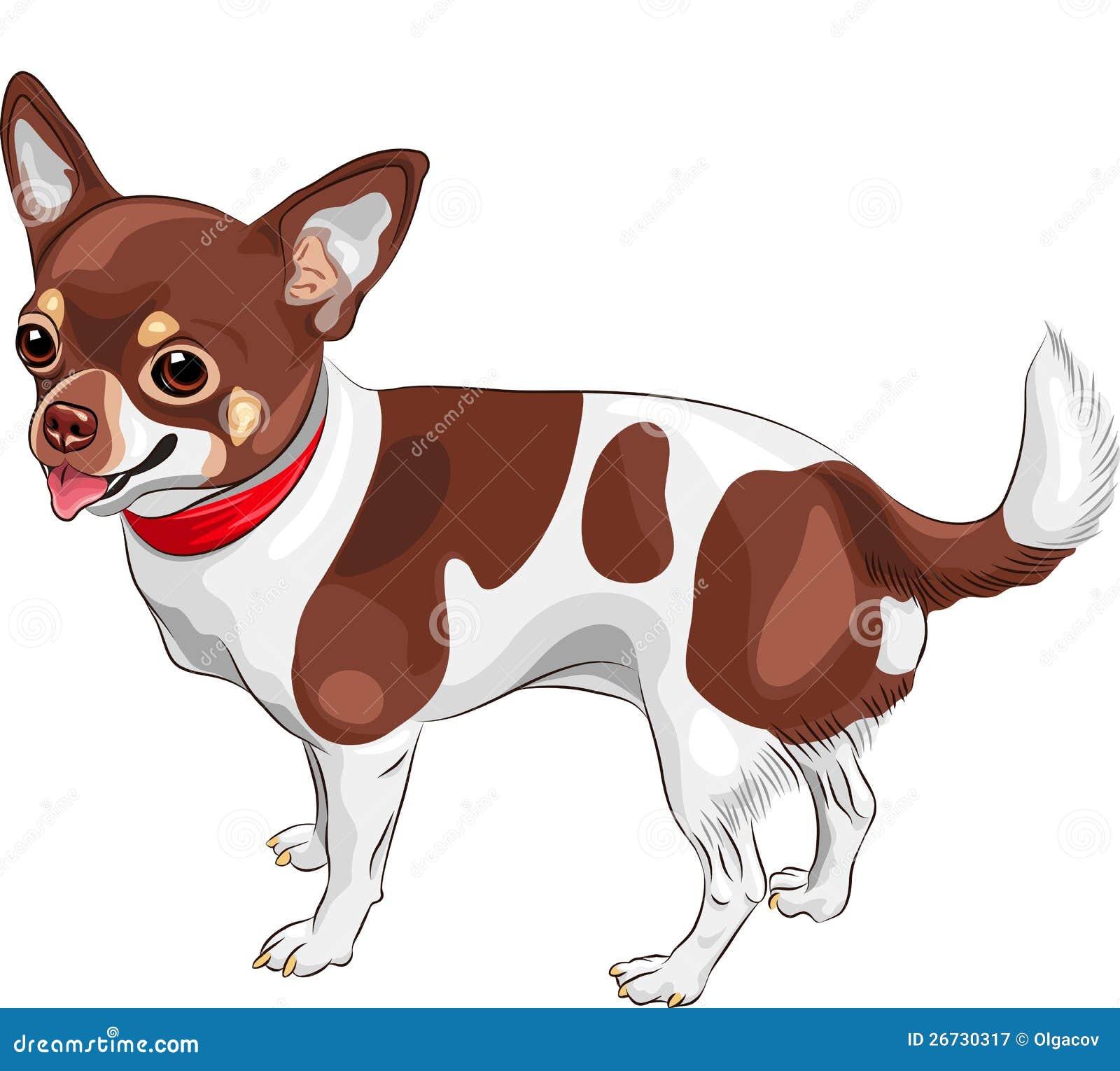 Sonrisa De La Casta De La Chihuahua Del Perro Del Bosquejo Del ...
