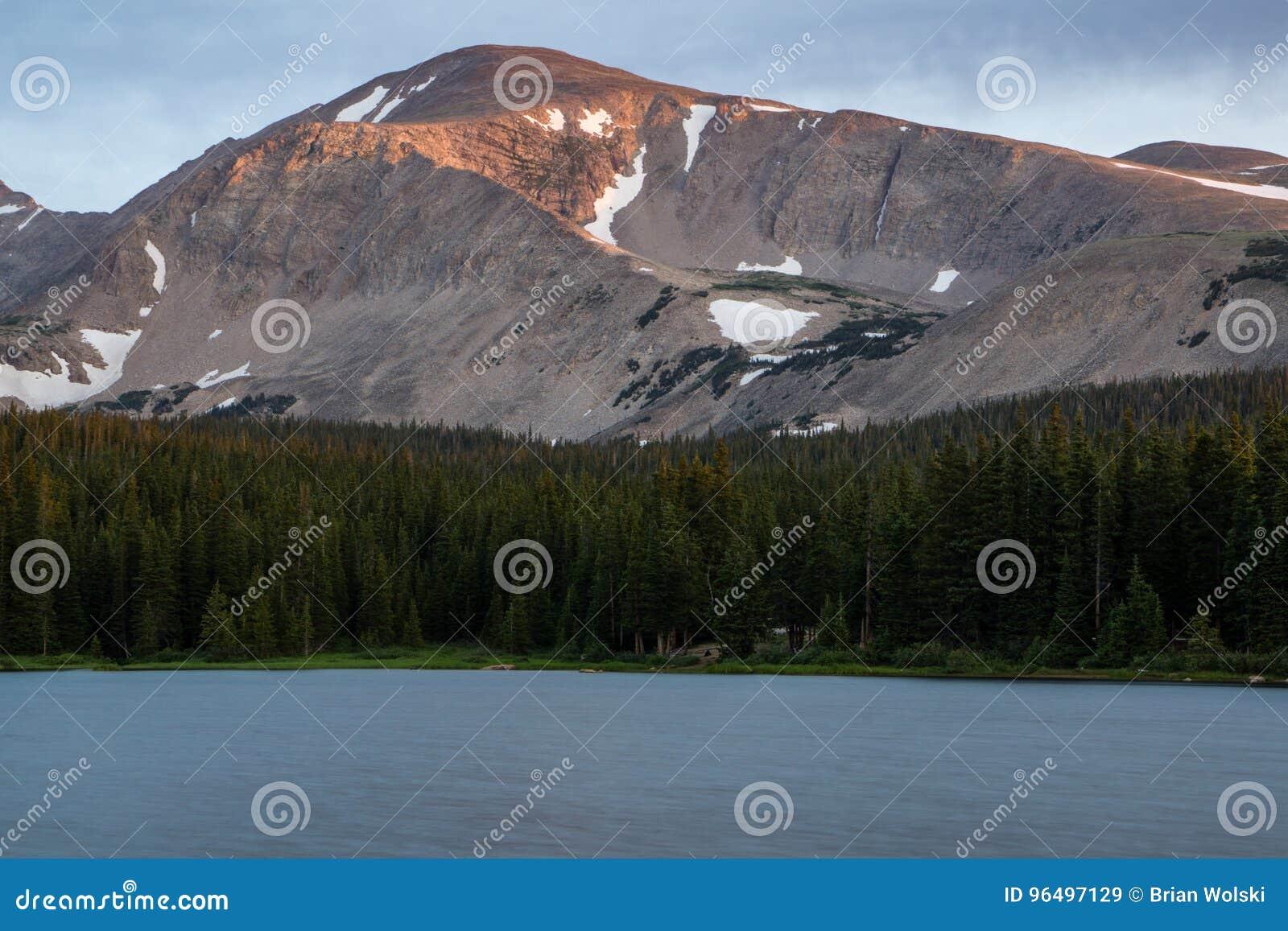 Soporte Audubon - Colorado