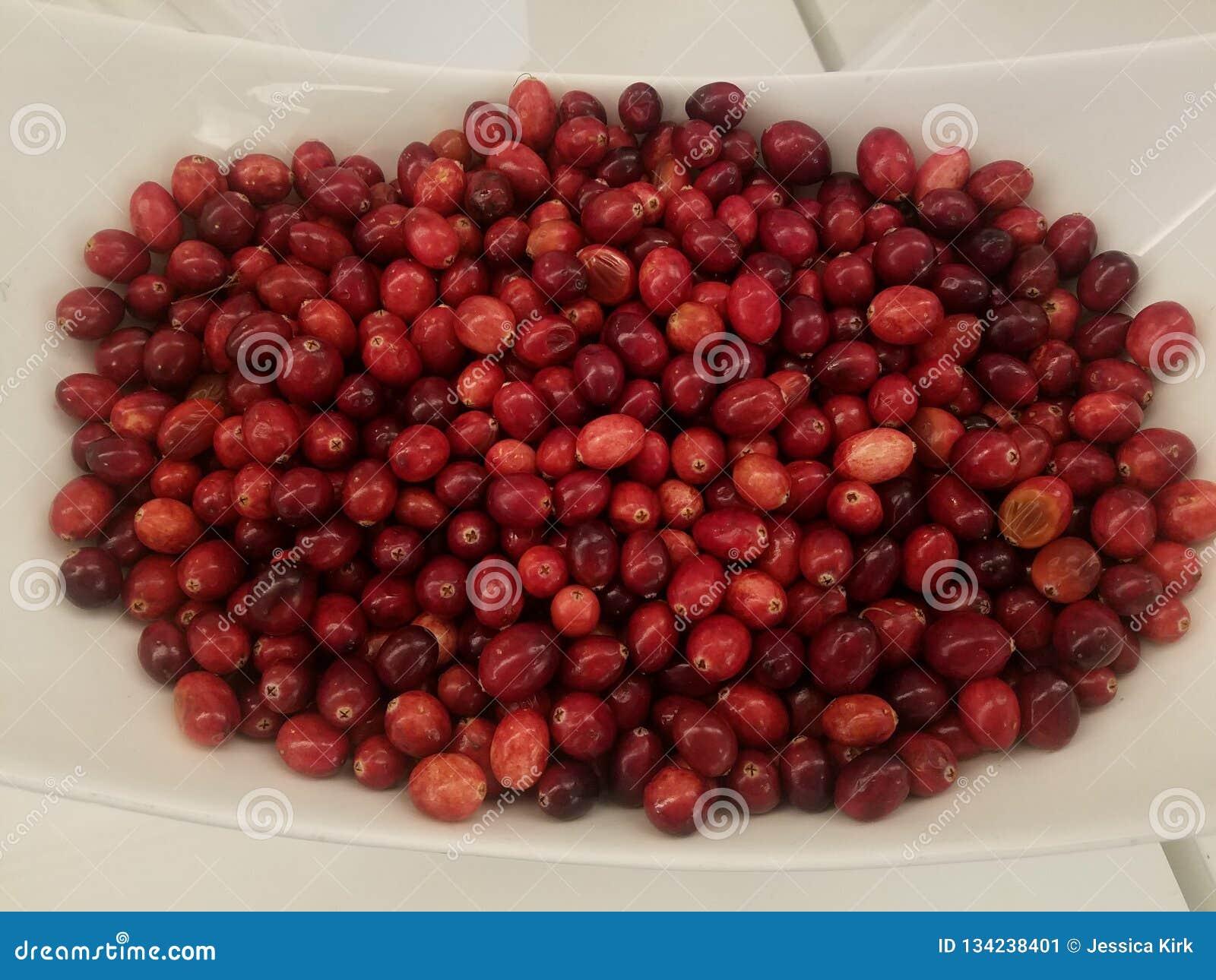 Sopra la vista dei mirtilli rossi freschi in ciotola bianca, ottenga i vostri antiossidanti