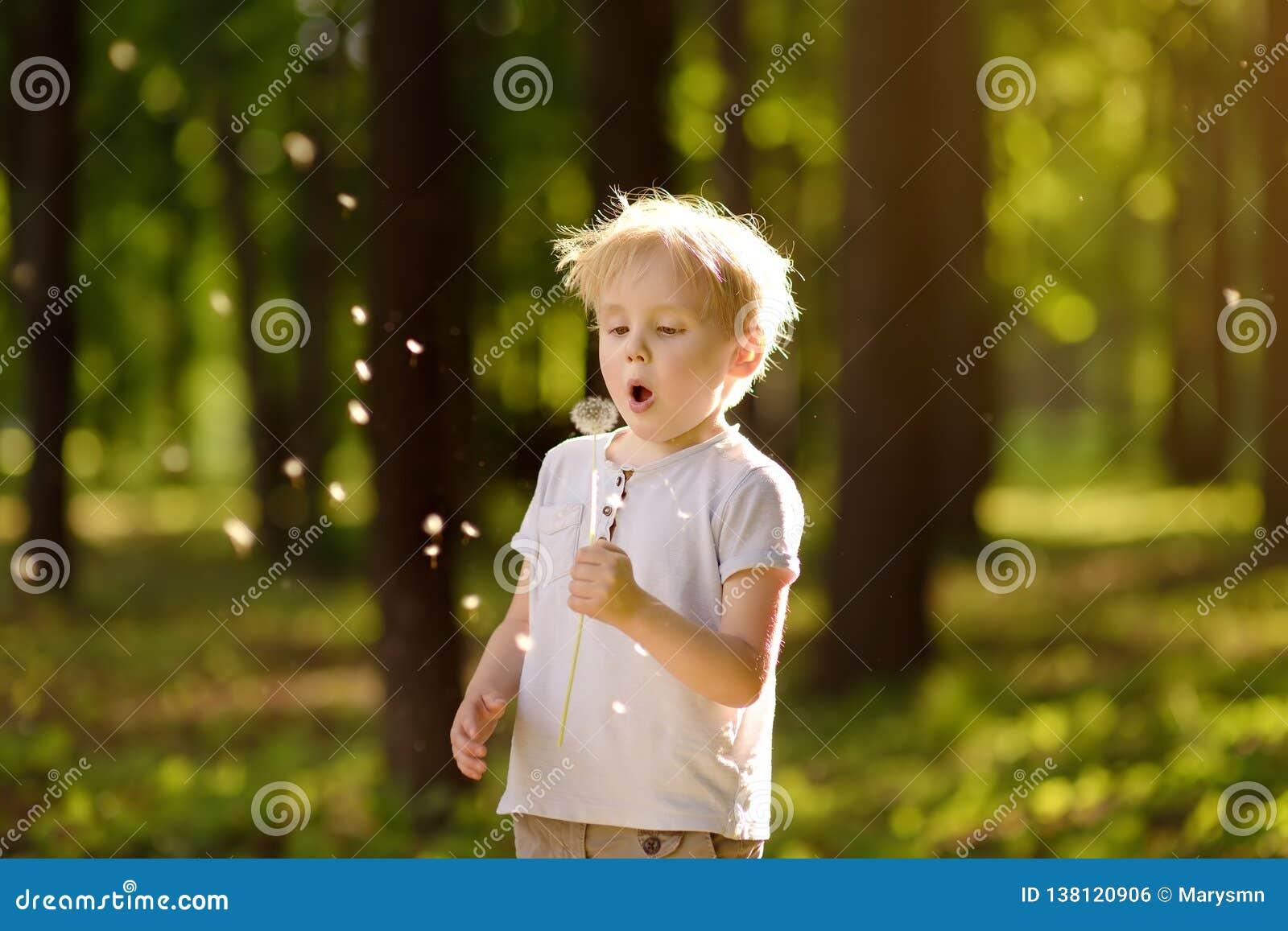 Sopros do rapaz pequeno abaixo do fluff do dente-de-leão Fazendo um desejo