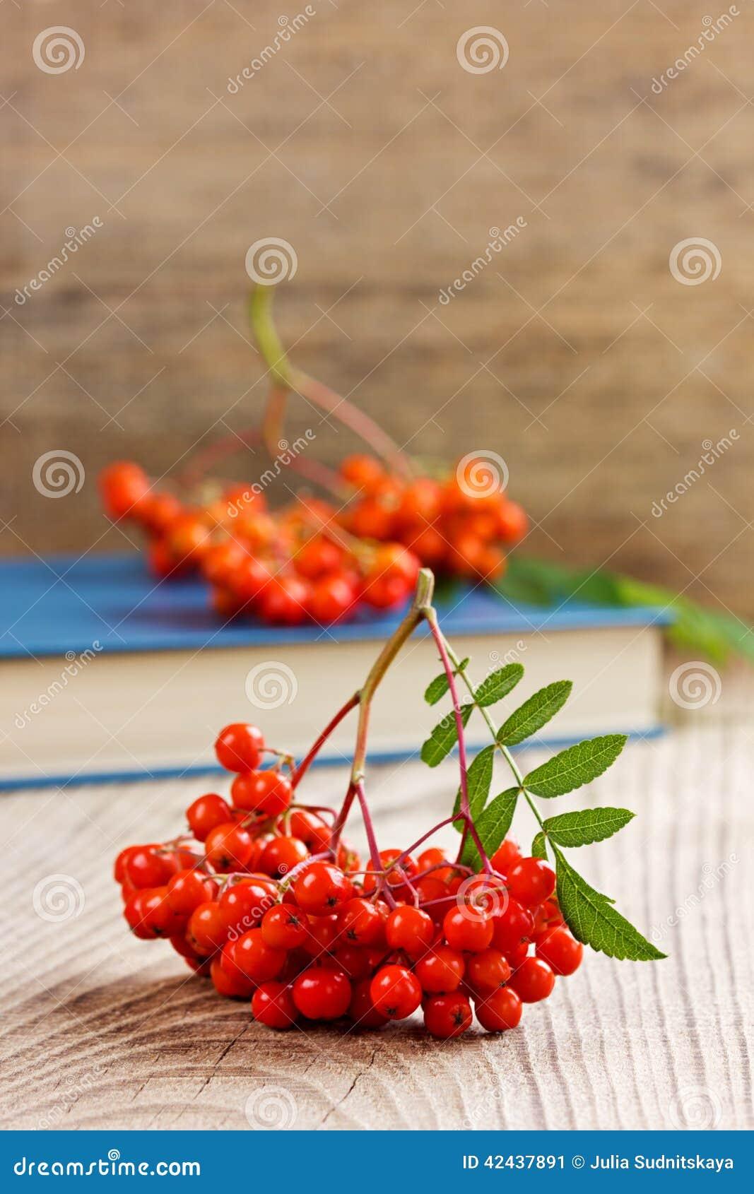 Sorba o ashberry en un tablero de madera