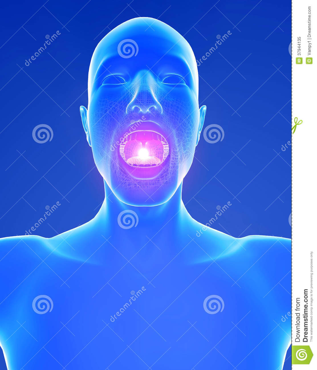 Inflammation In The Throat 104