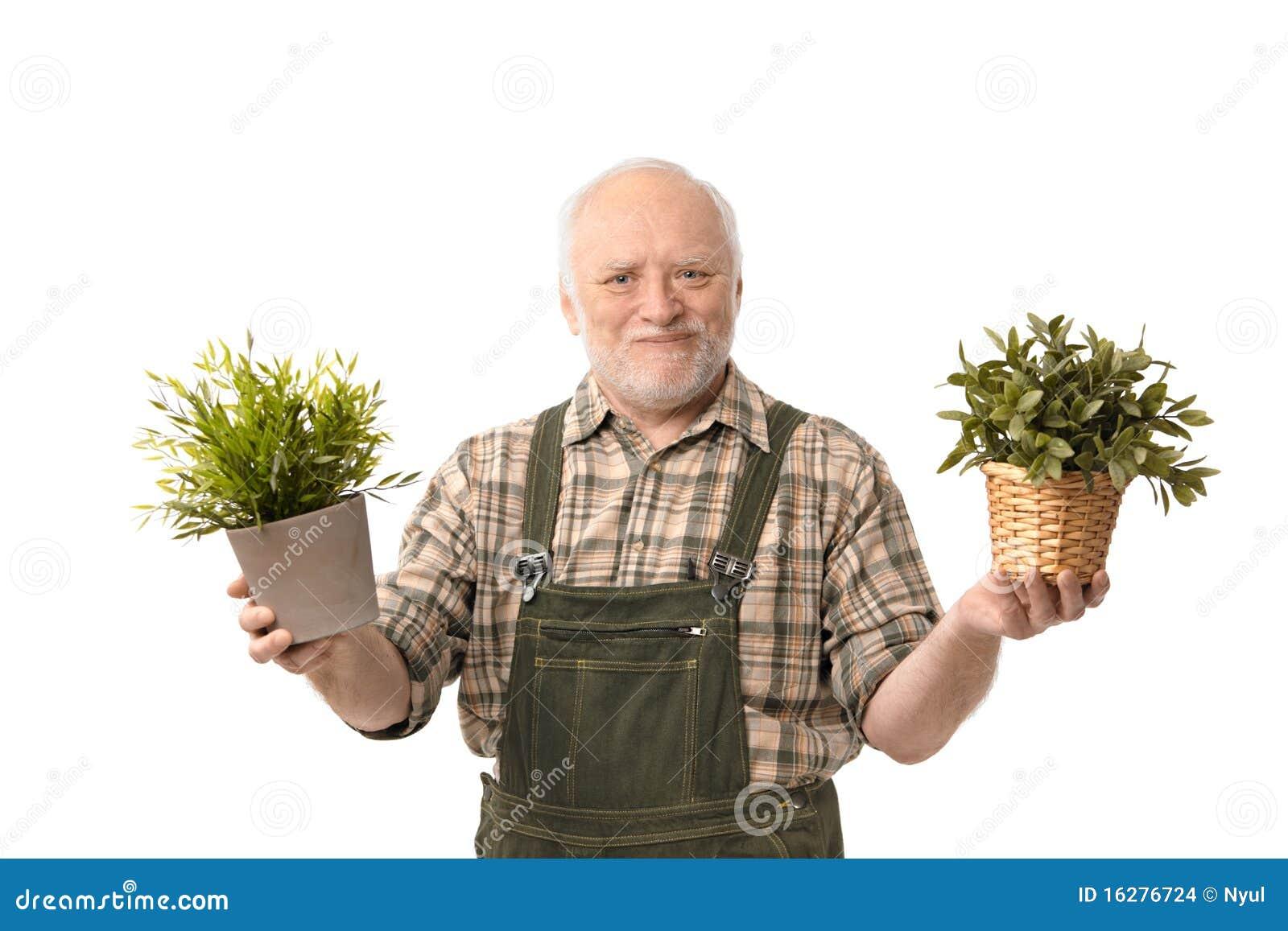 Sorriso sênior da planta da terra arrendada do jardineiro