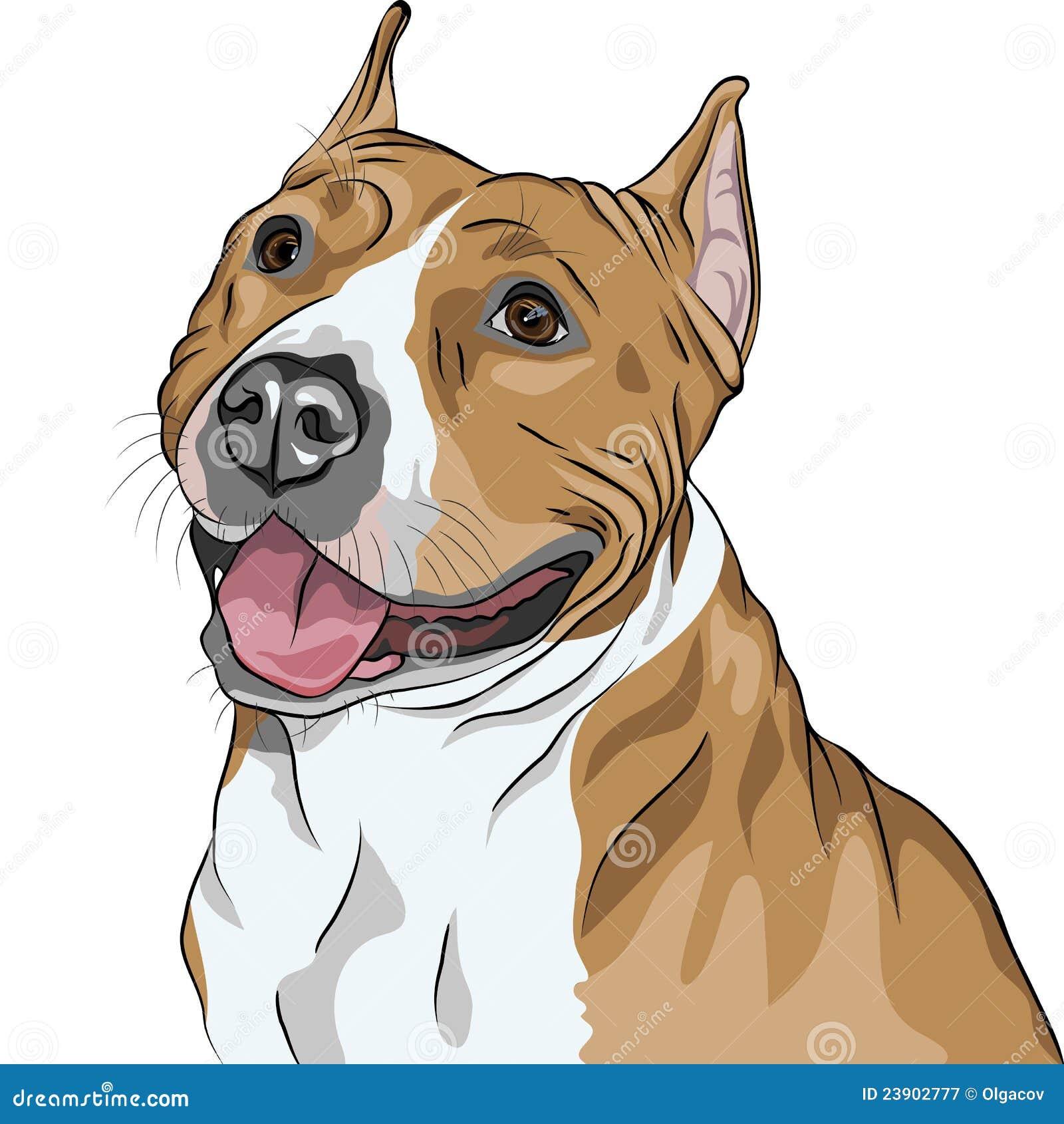 Sorrisos da raça do terrier de Staffordshire americano do cão
