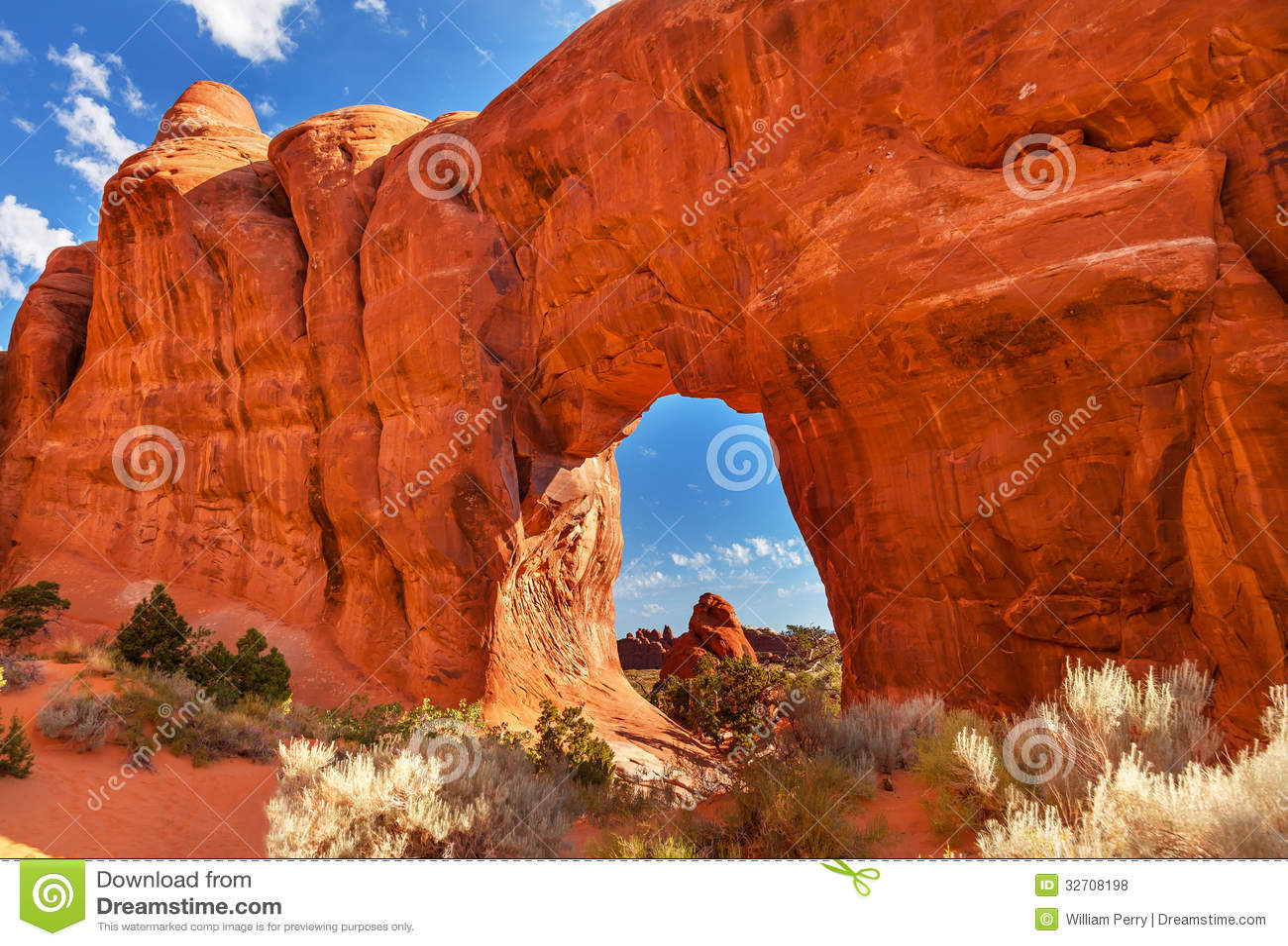Sosna diabłów Łękowaty ogród Wysklepia parka narodowego Moab Utah