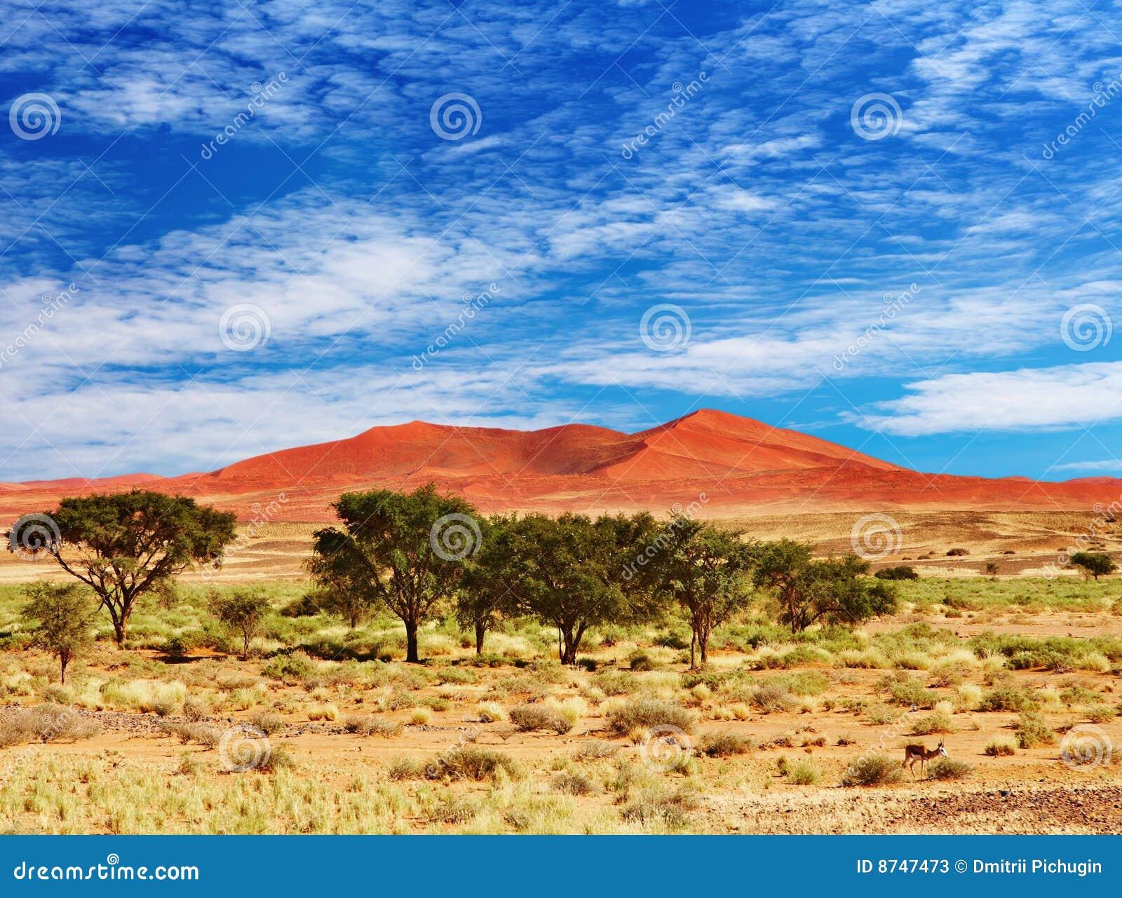 Sossufley de la Namibie de namib de désert