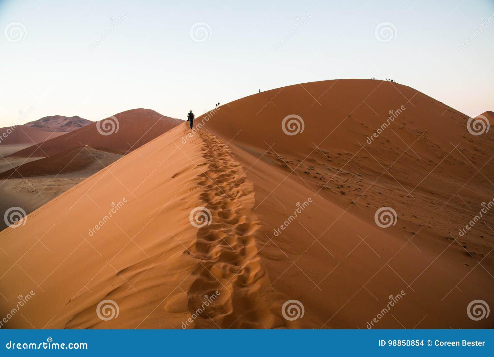 Sossusvlei-Düne 45 Namibia