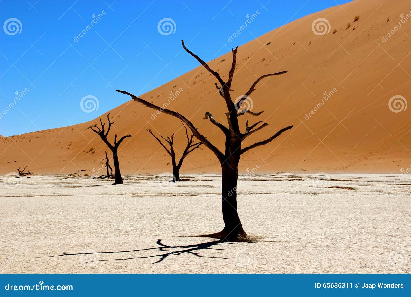 Sossusvlei Namibie de Deadvlei