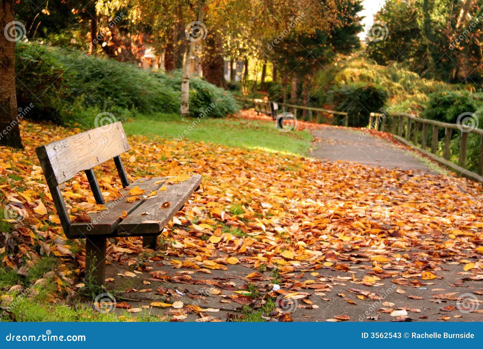 Sosta in autunno