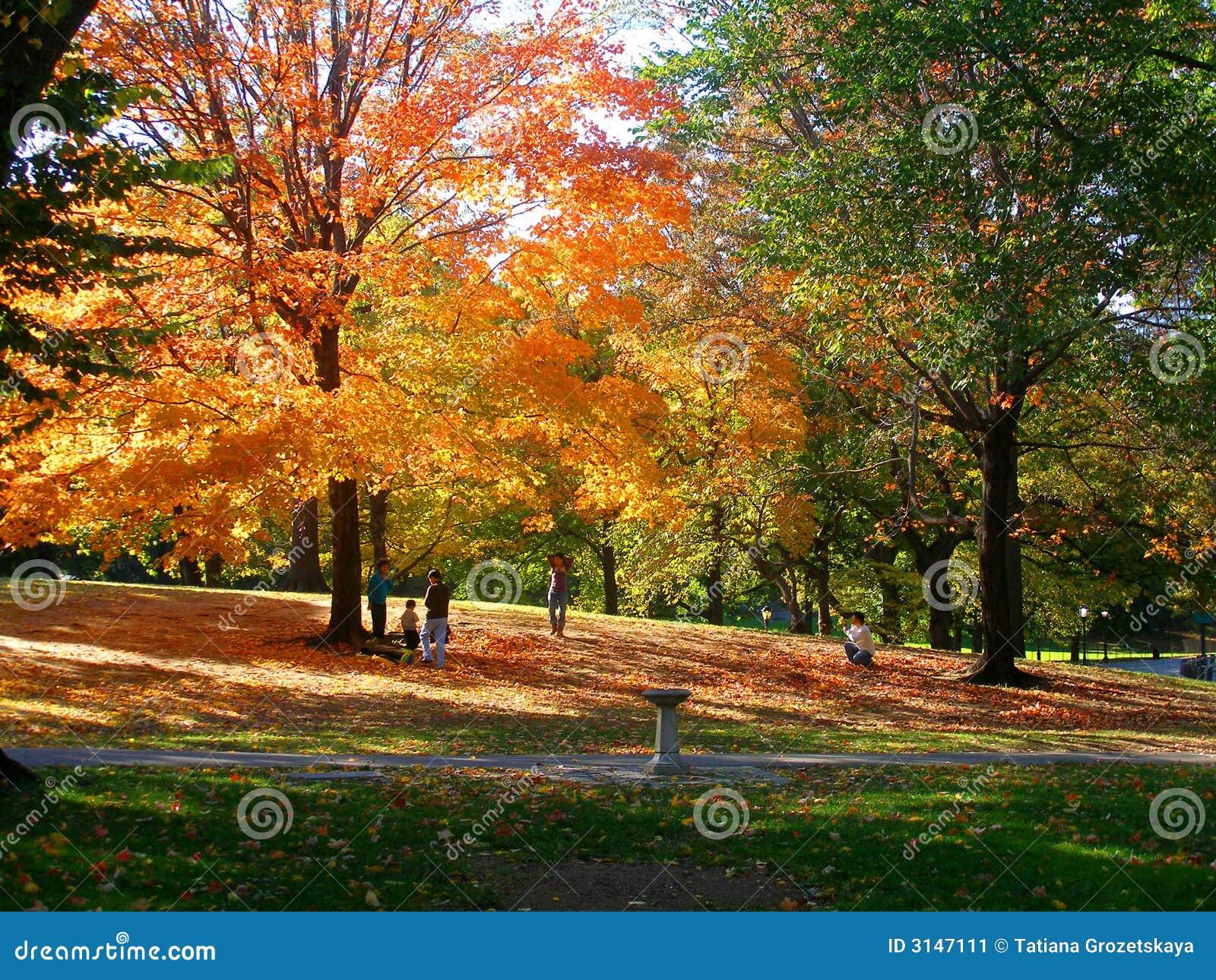 Sosta d autunno