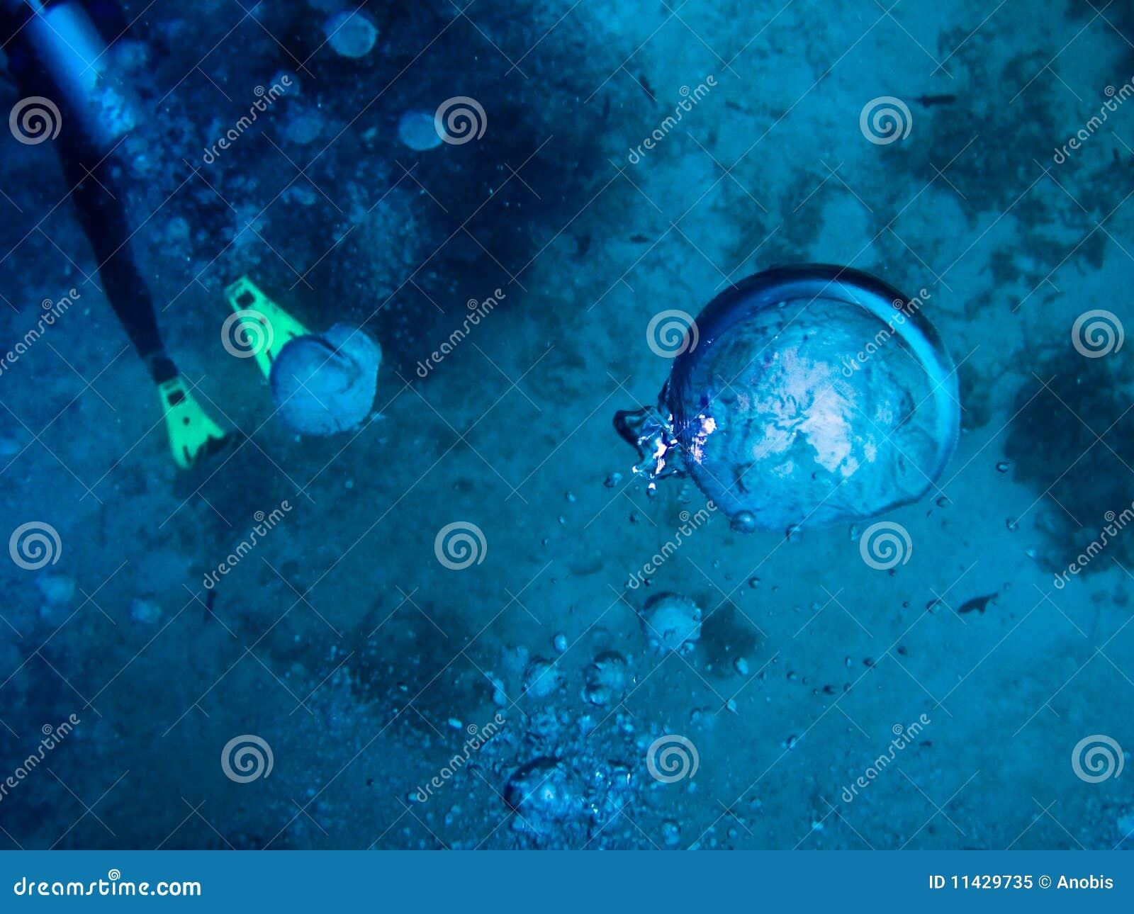 Sotto il mondo dell acqua ai Maldives