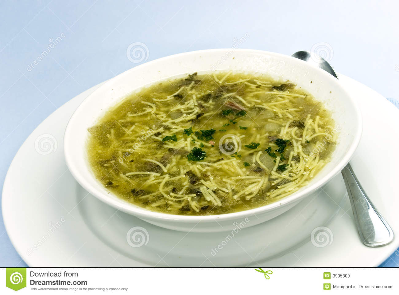 Soup Of Goose. Close Up Royalty Free Stock Images - Image: 3905809