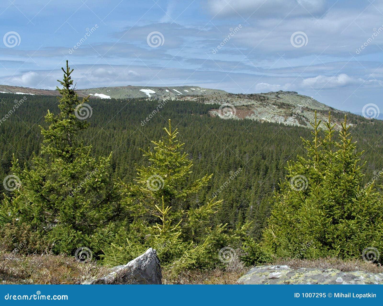 Source en montagnes