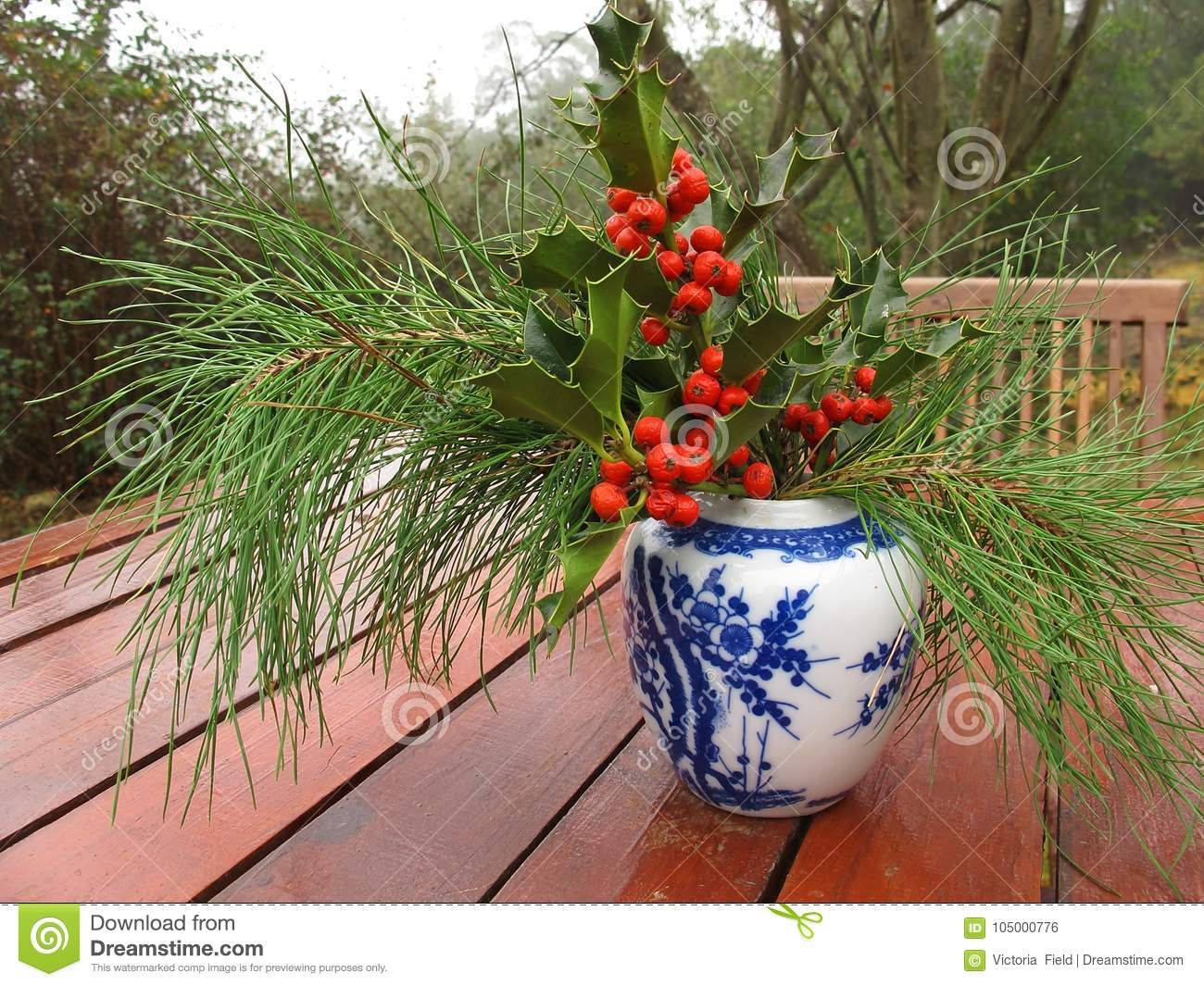 download south african christmas bouquet with holy and pine branches stock photo image of bouquet - African Christmas