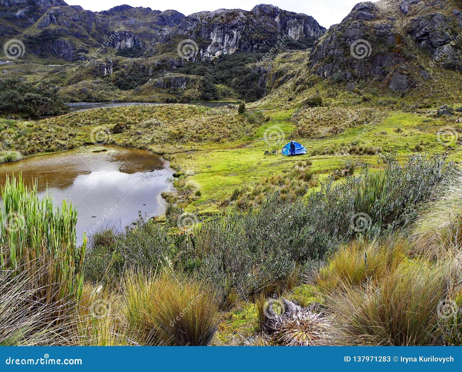 Toreadora lake lagoon and camping at National Park El Cajas, Andean Highlands, Ecuador