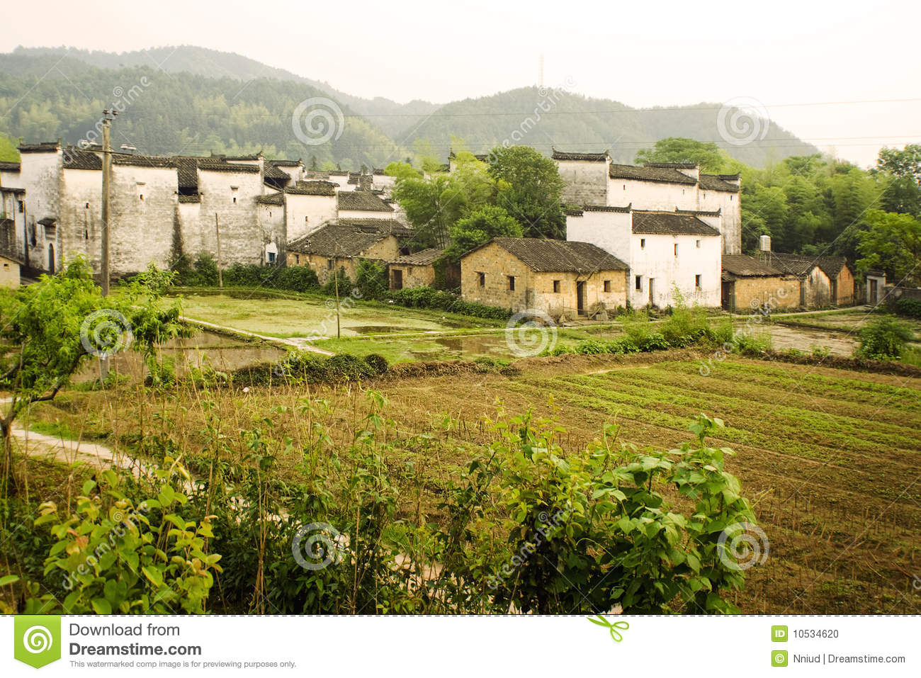 Down on the Farm: Agriculture in China Today | News ...  |China Farmland