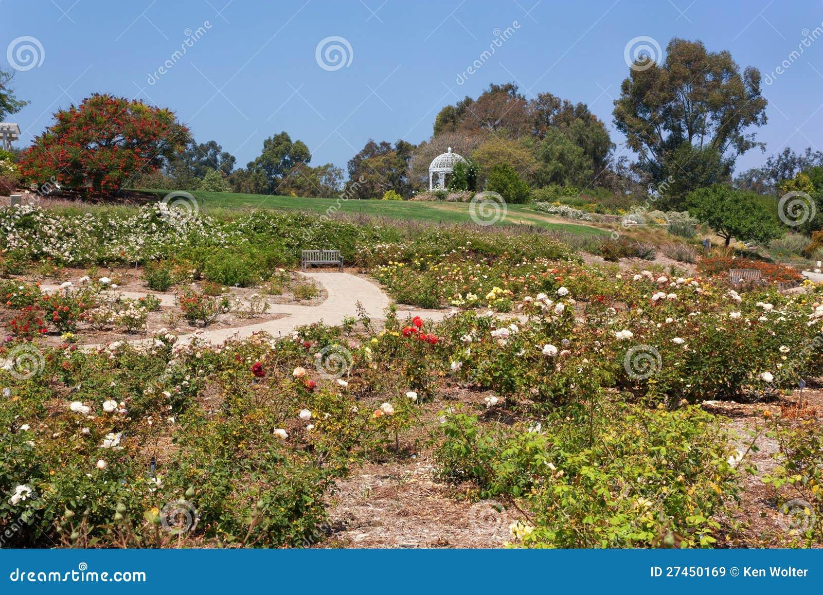 South Coast Botanic Garden Royalty Free Stock Images Image 27450169