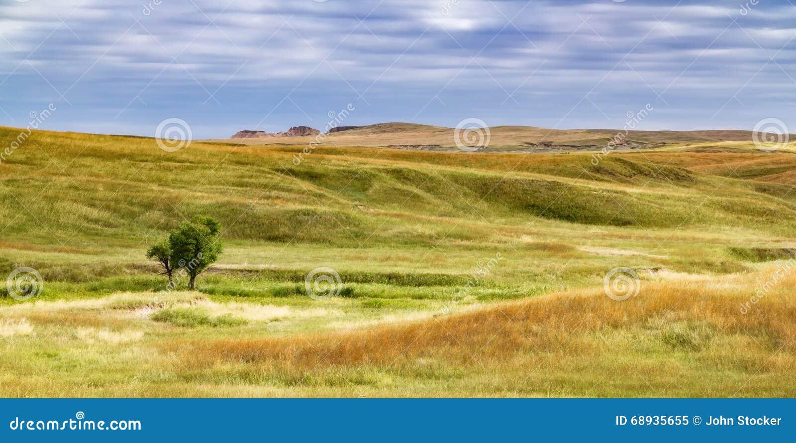 South Dakota grässlätt