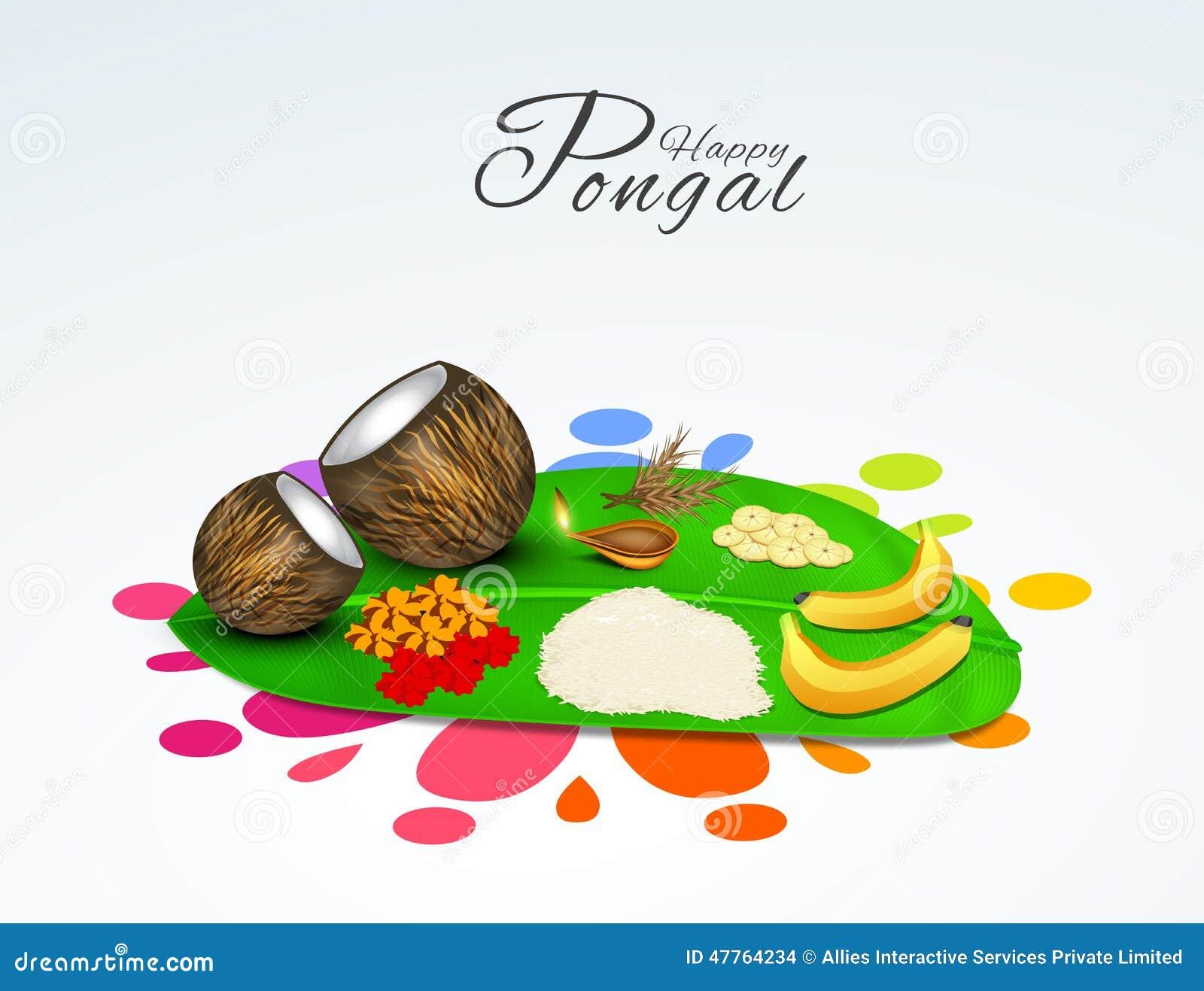 South Indian Festival Happy Pongal Celebrations Concept