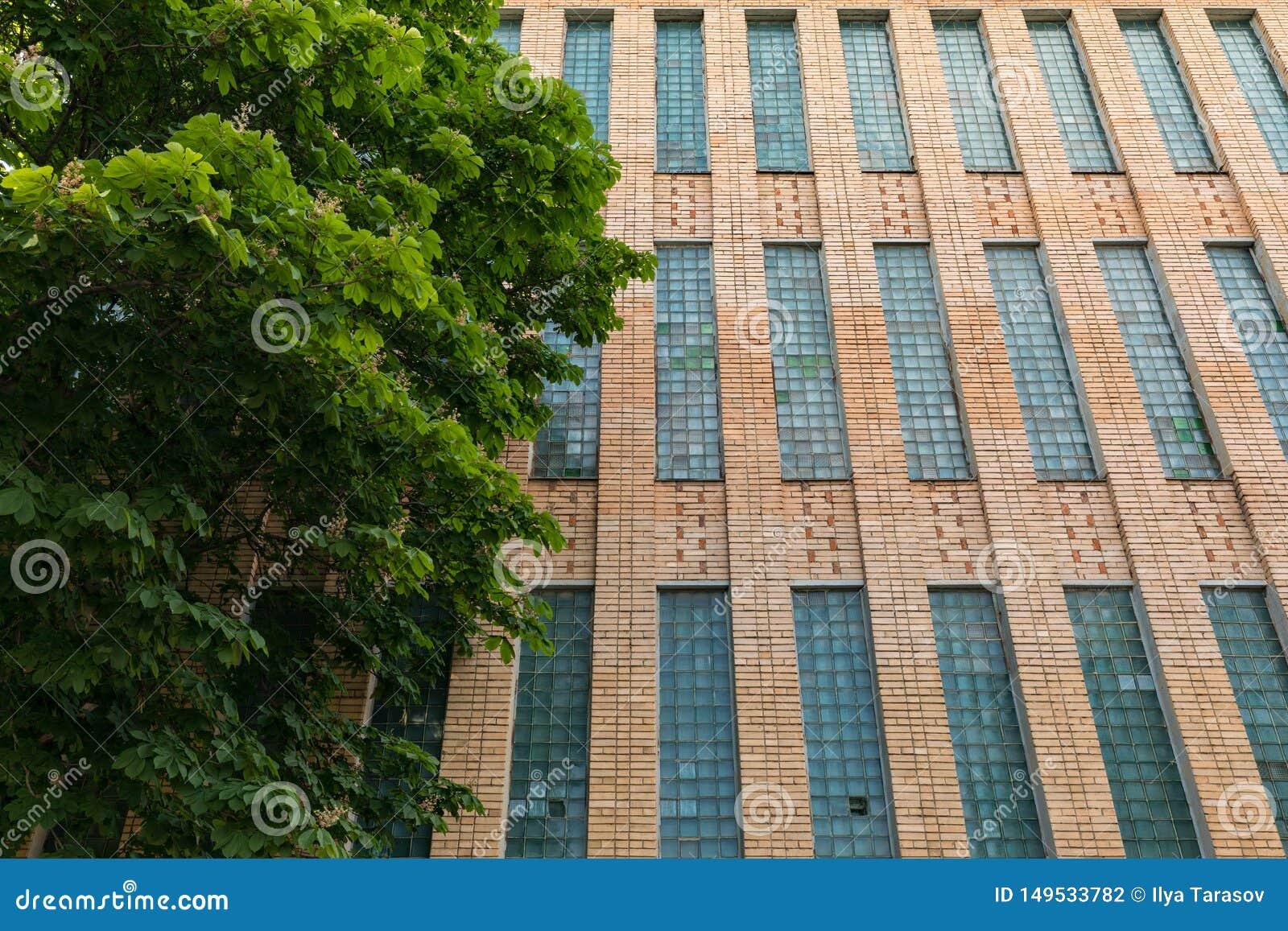 Sovjetiska akademiarkitekturriga vetenskaper Tegelstenbyggnad med fönster för exponeringsglaskvarter Arkitektur av Ryssland