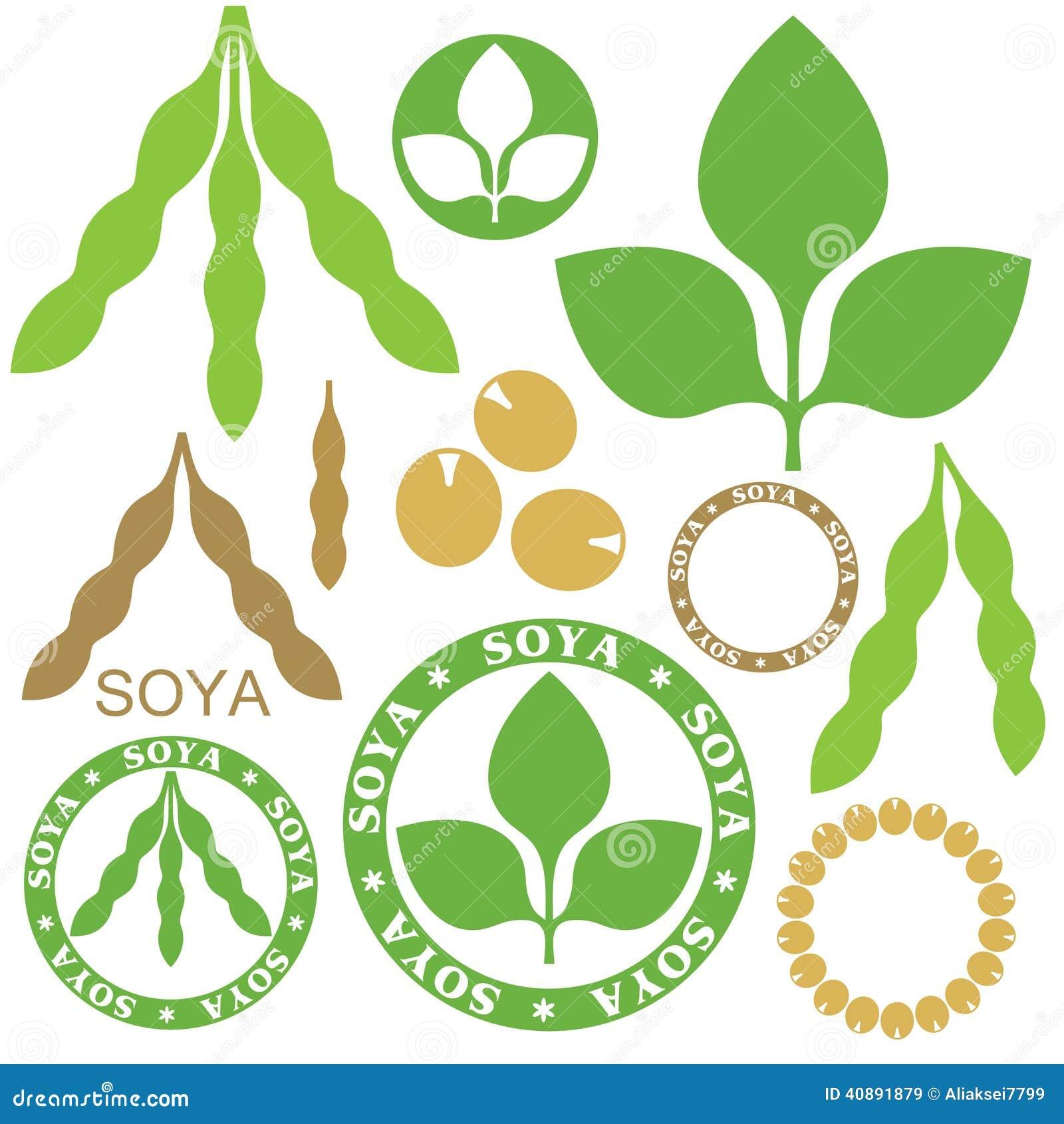 soybean stock illustrations 1 061 soybean stock illustrations rh dreamstime com Soybean Pods Soybean Plant Clip Art