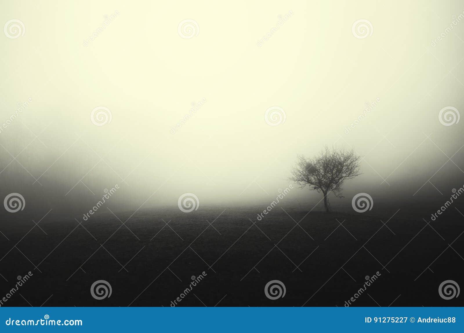 Spökad äng med trädet