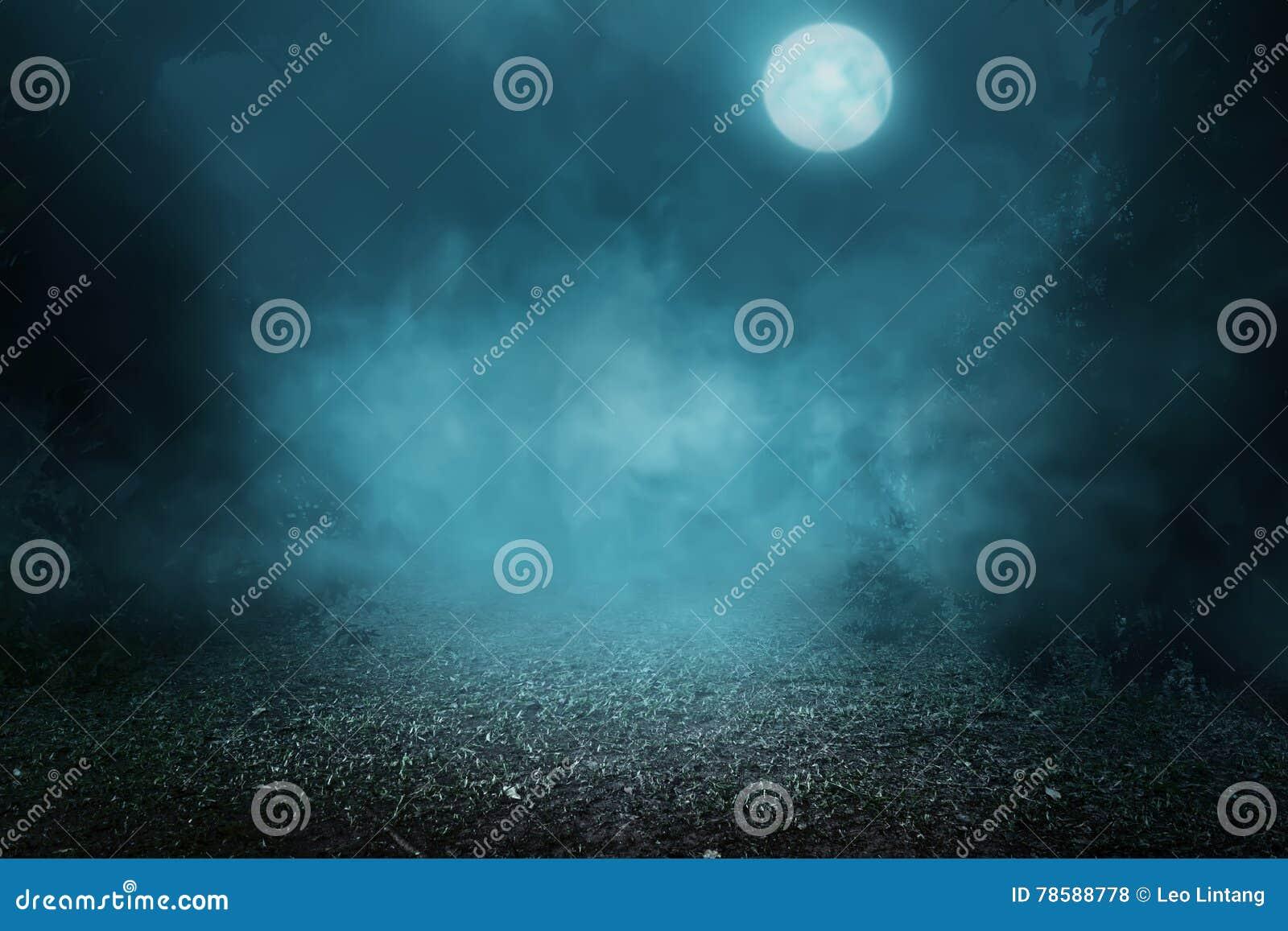 Spöklik dimmig skog