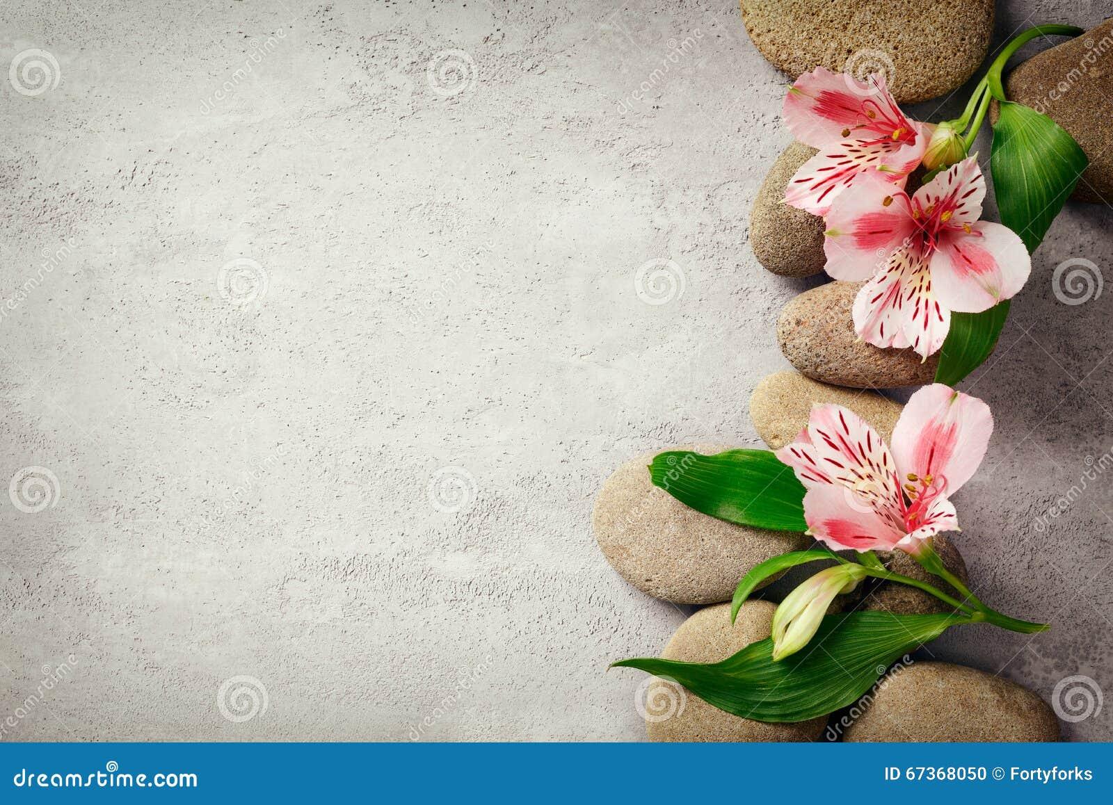 Frangipani spa flowers stock photo image 14654190 - Spa Background With Flowers Stock