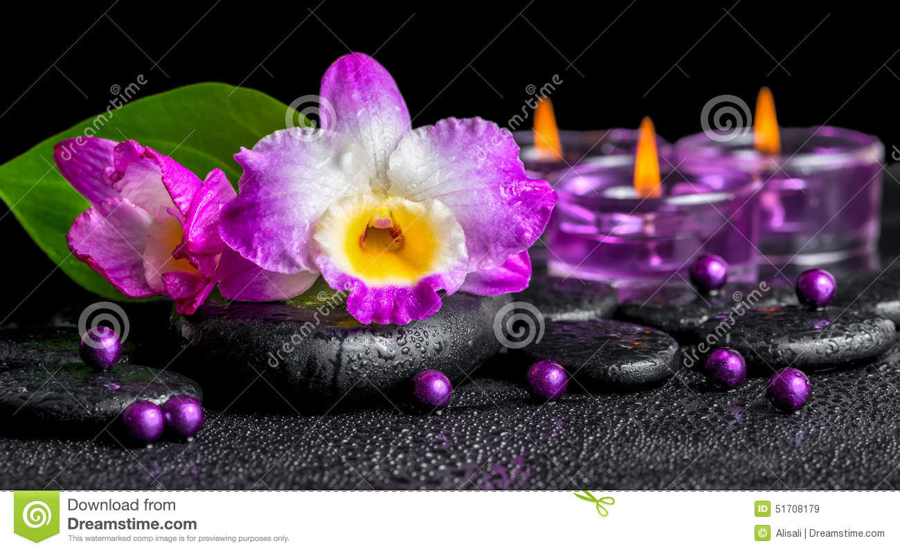 spa background of purple orchid dendrobium, green leaf Calla lily and candles on black zen stones with drops, panorama