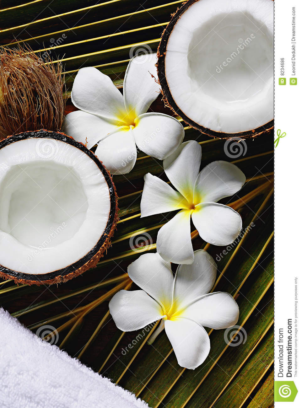 Spa Coconut Royalty Free Stock Image Image 8234686