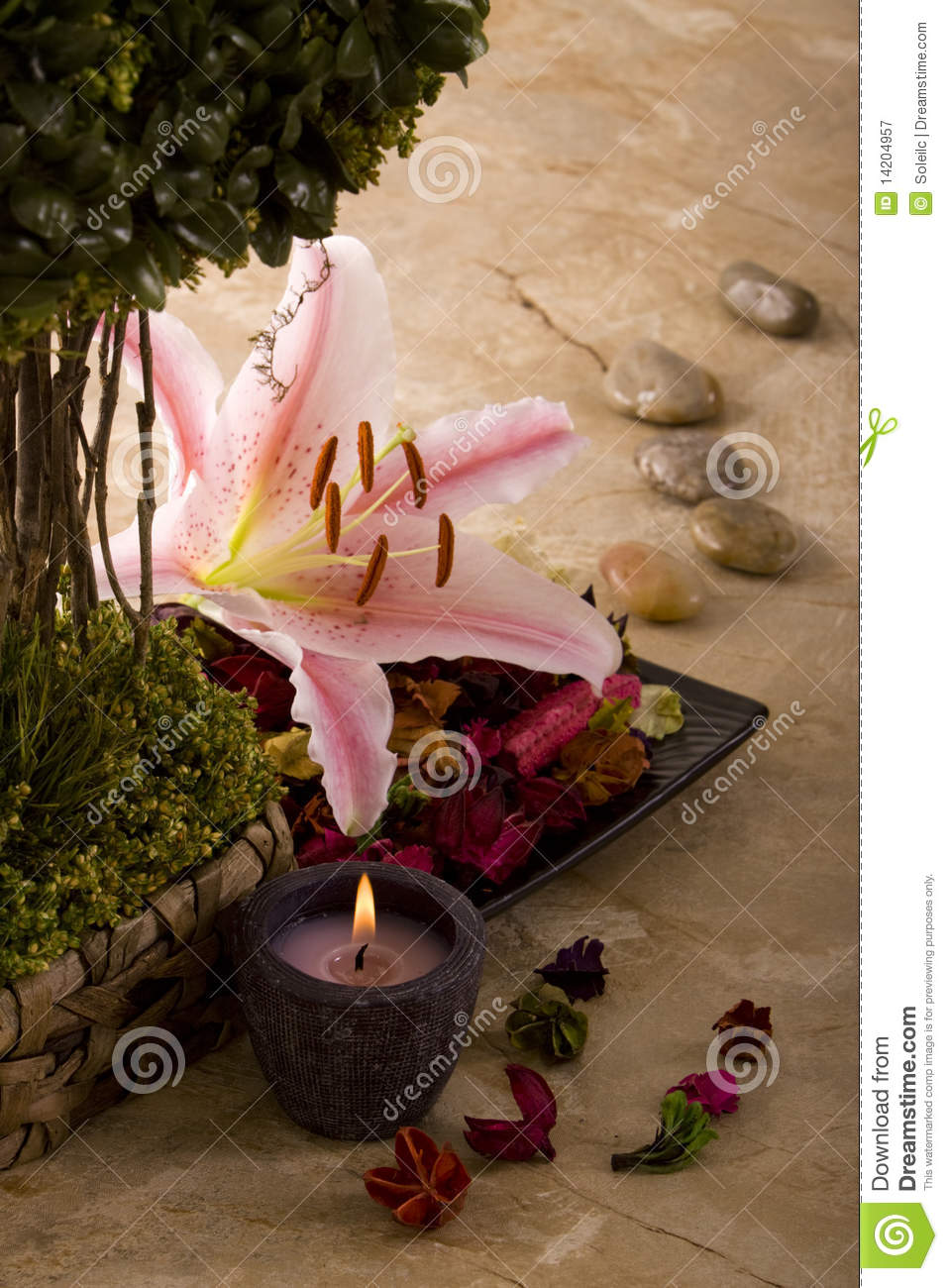 spa decor - Spa Decor