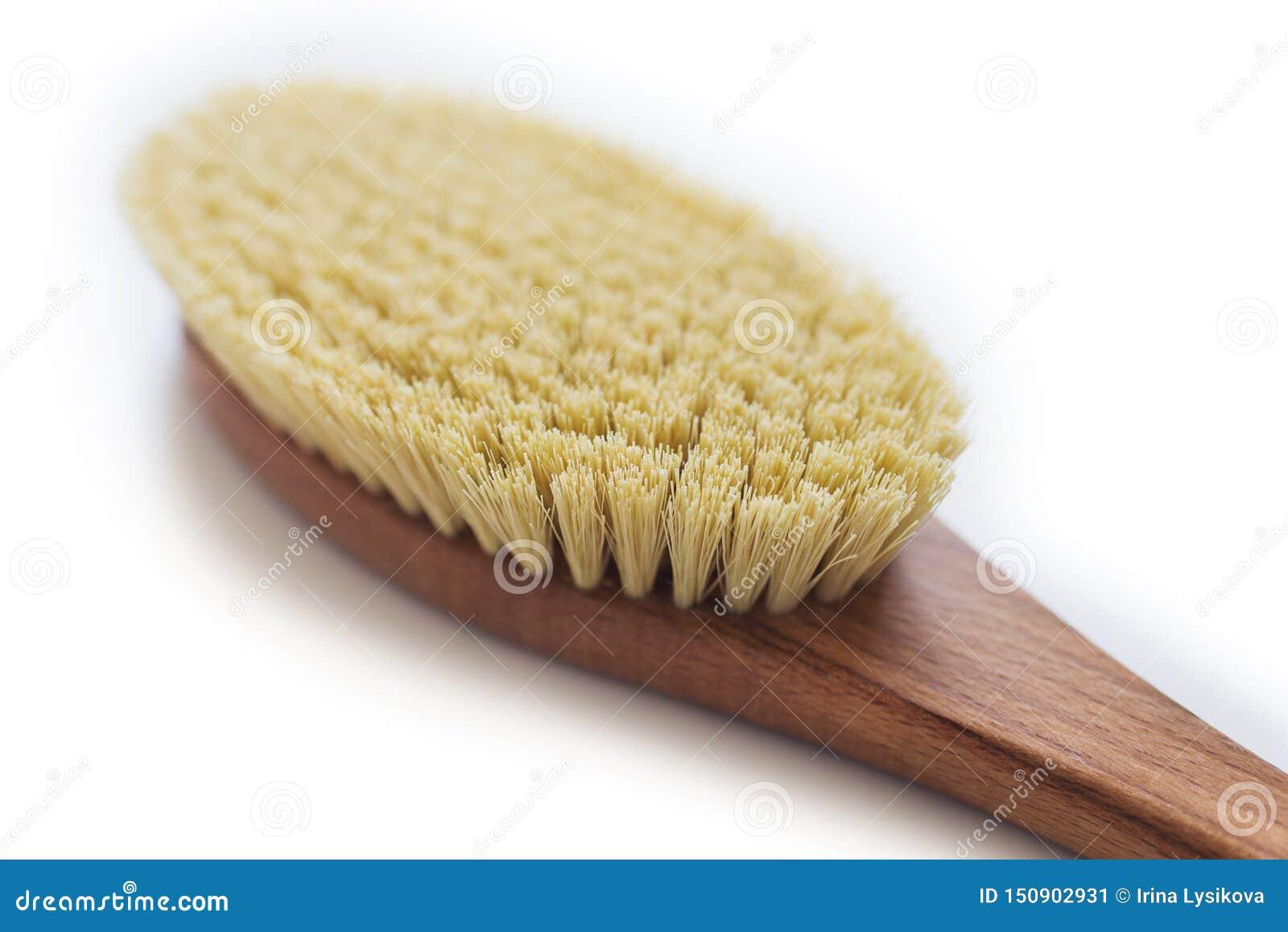 Spa Organic Brush For Dry Massage  Cactus Brush  Anti