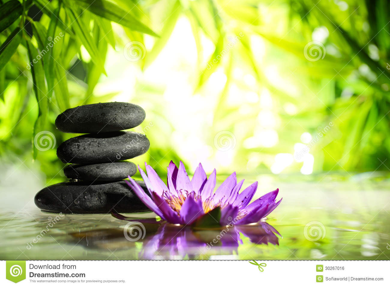 Spa still life with lotus and zen stone on water