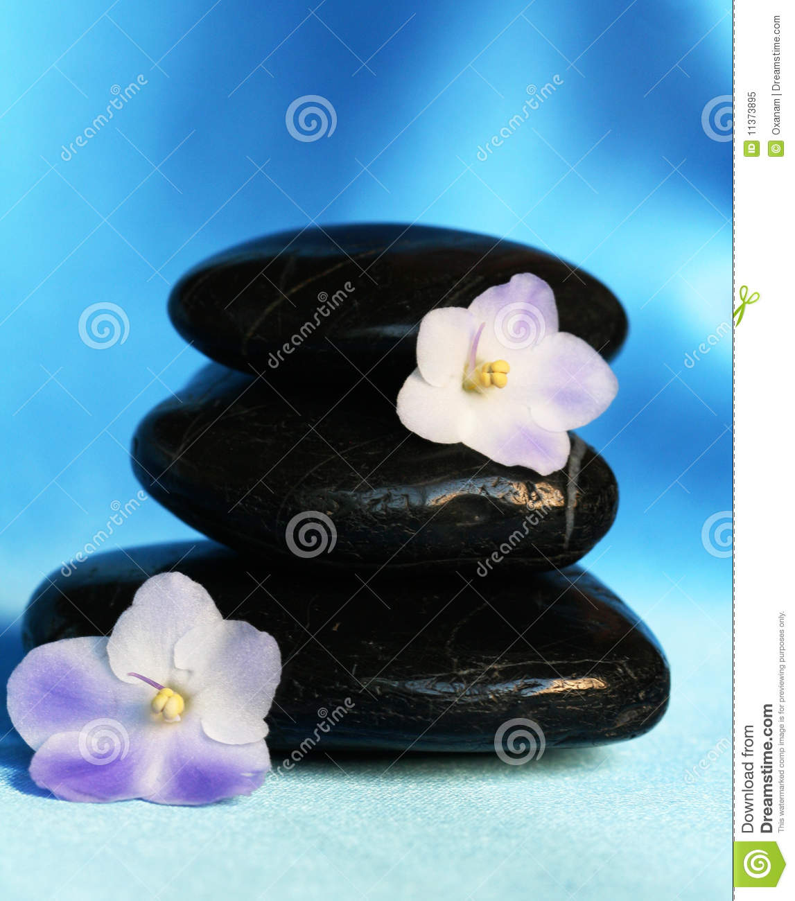 Spa Stones With Flowers On Blue Silk Background Stock Image Image