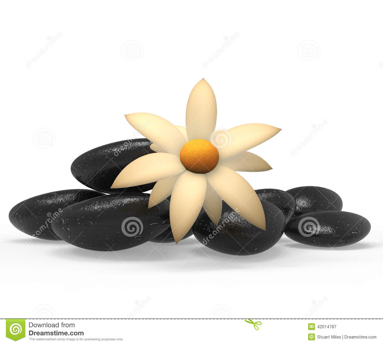 Spa stones indicates tranquility flowers and flora stock for Floar meaning
