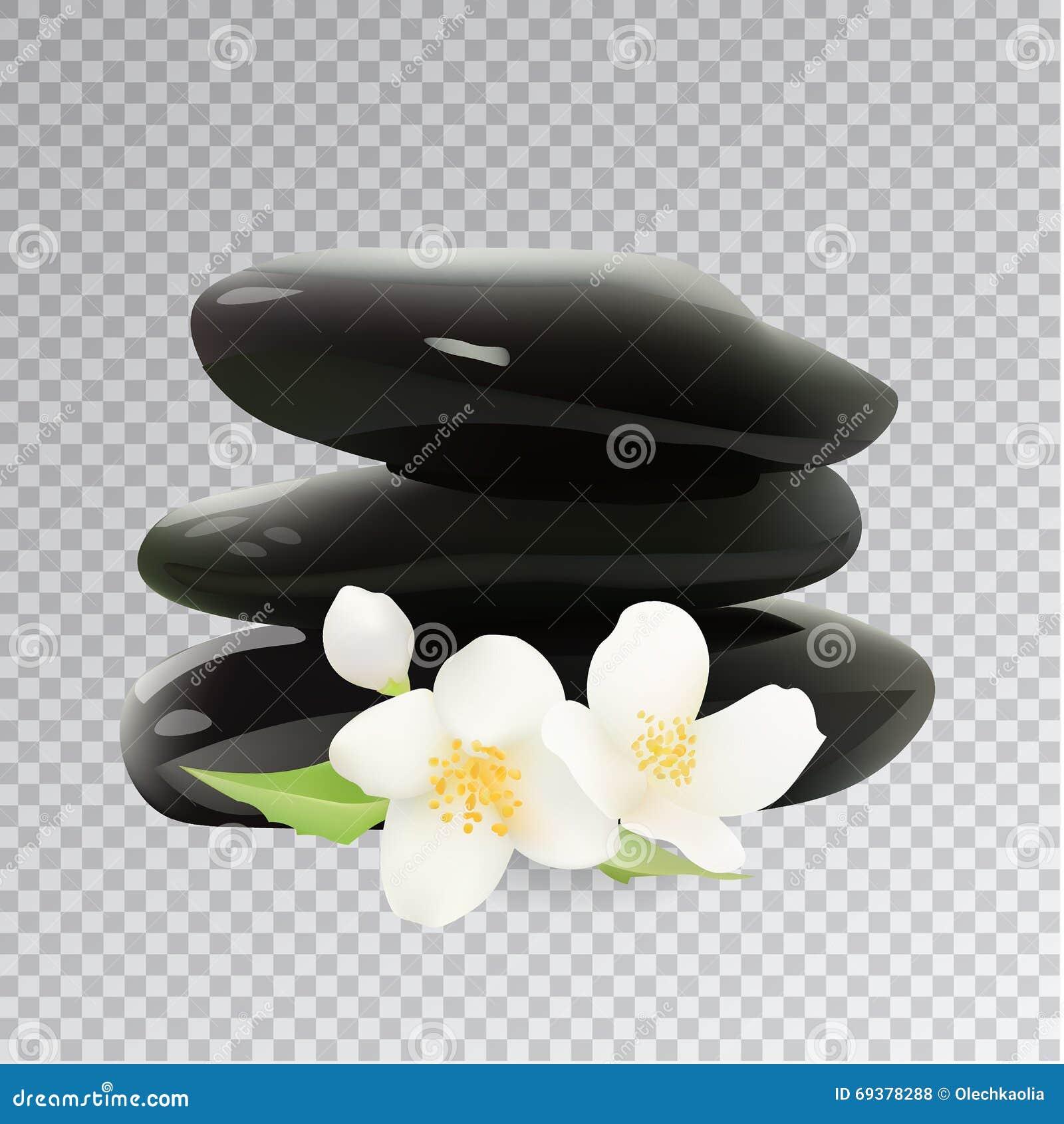 Spa Stones With Jasmine Flower Vector Illustration Template