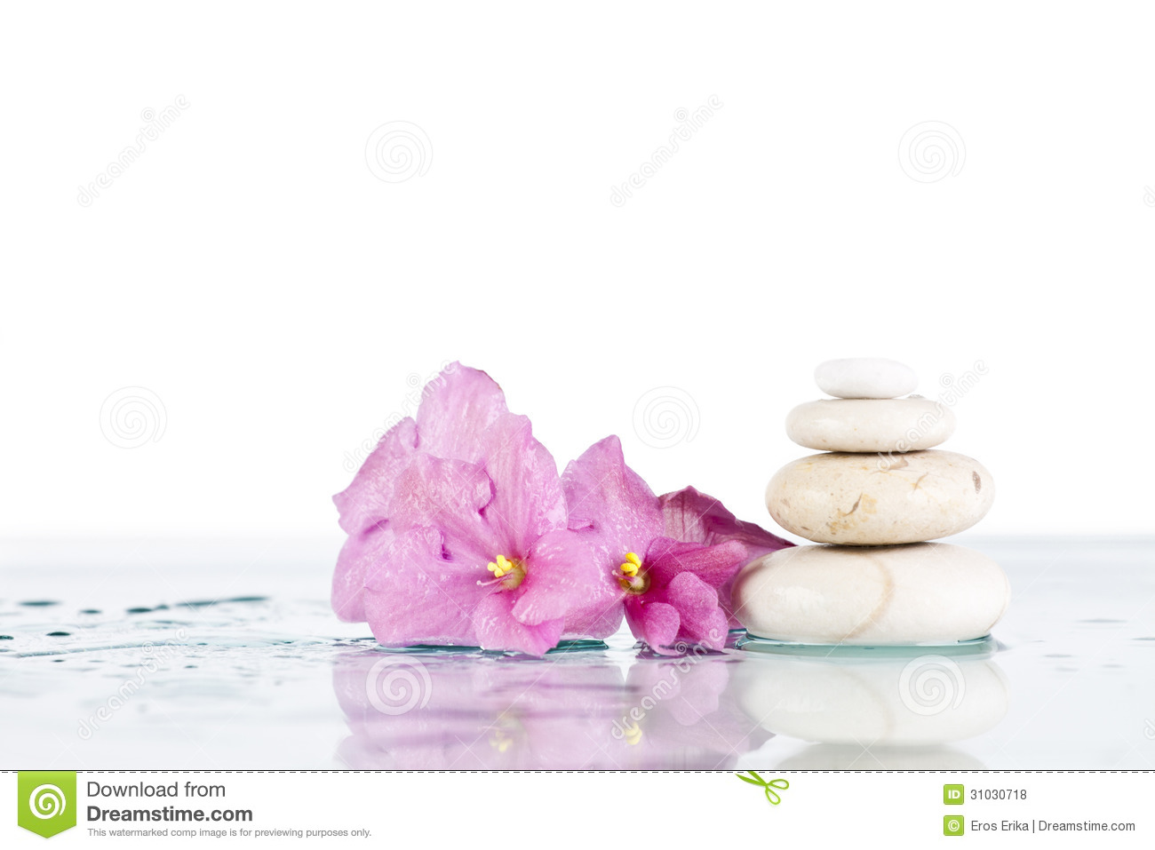 Spa Stones And Pink Flower On White Background Stock Photo