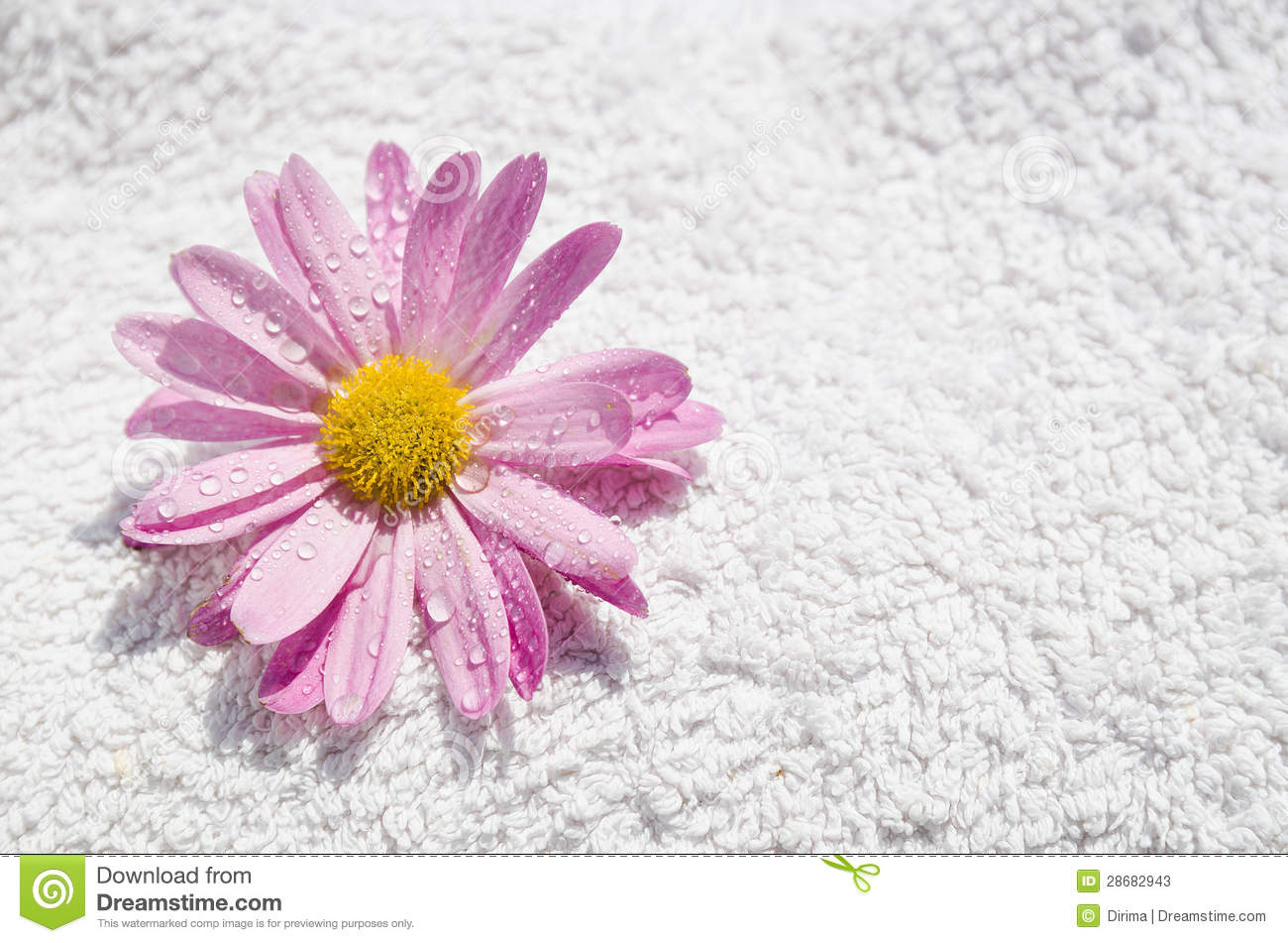 spa wet flower and towel stock photos   image 28682943