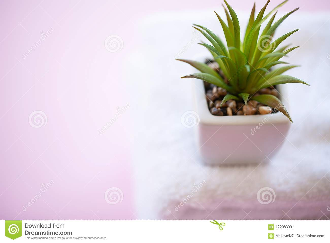 Spa. White Cotton Towels Use In Spa Bathroom on Pink Background.
