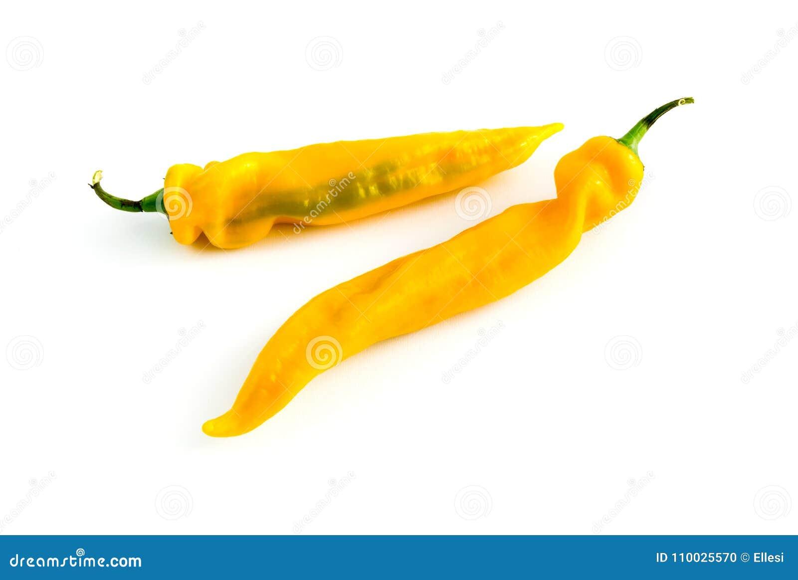 Spaanse pepers gele die peper op witte achtergrond wordt geïsoleerd